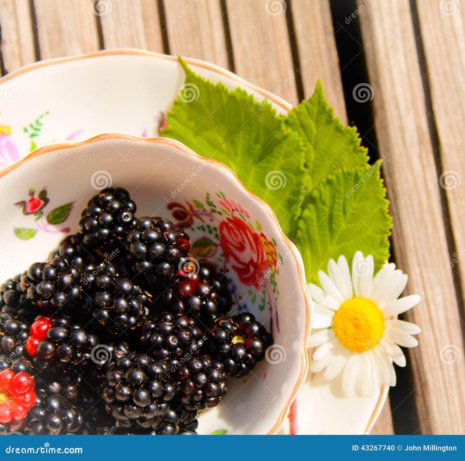 Fresh Blackberries Stock Photo. Image Of Organic, Berry