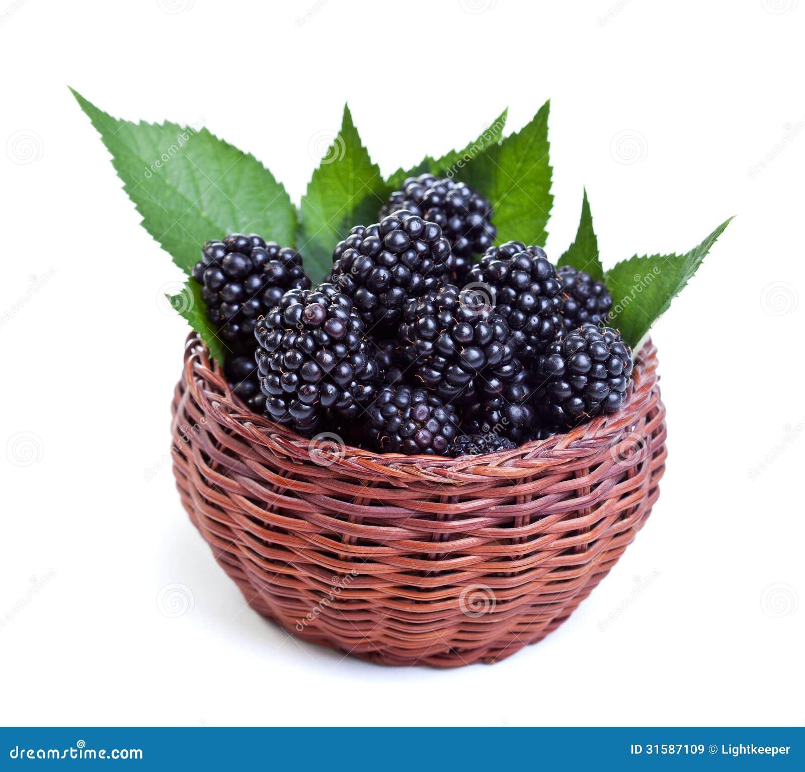 how to clean fresh blackberries