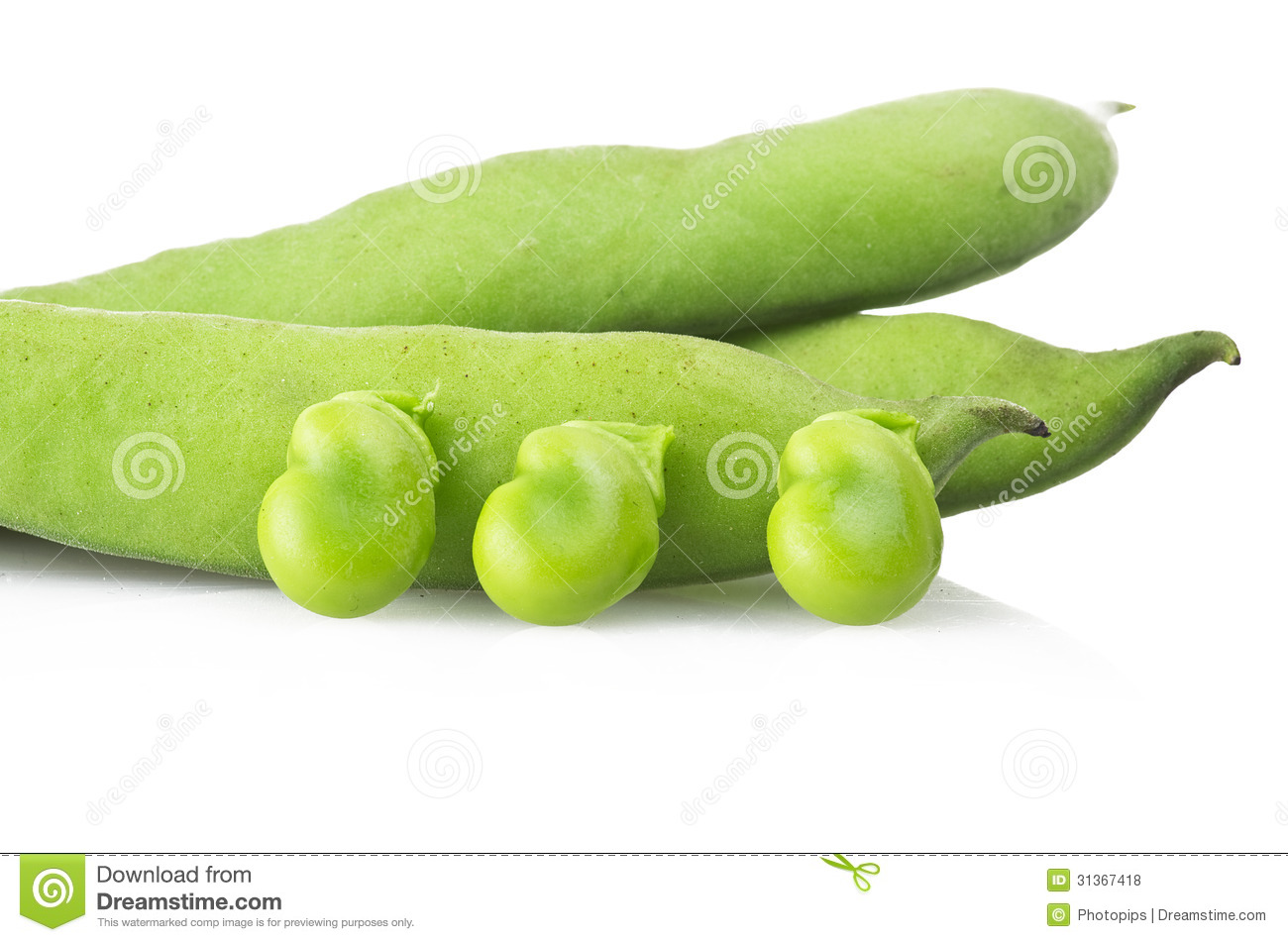 how to cook fresh broad beans from the garden