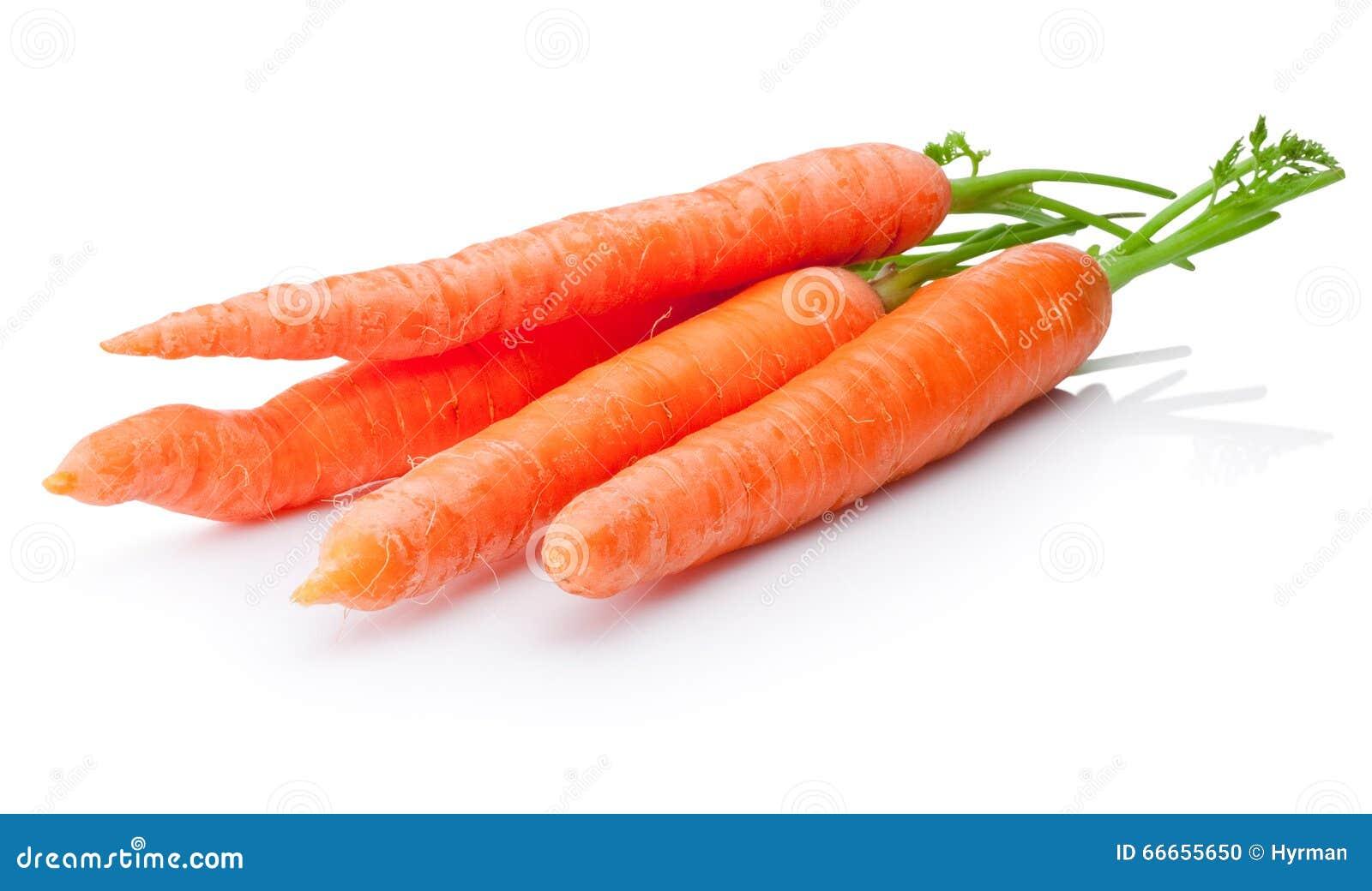 Fresh carrots vegetable on white background
