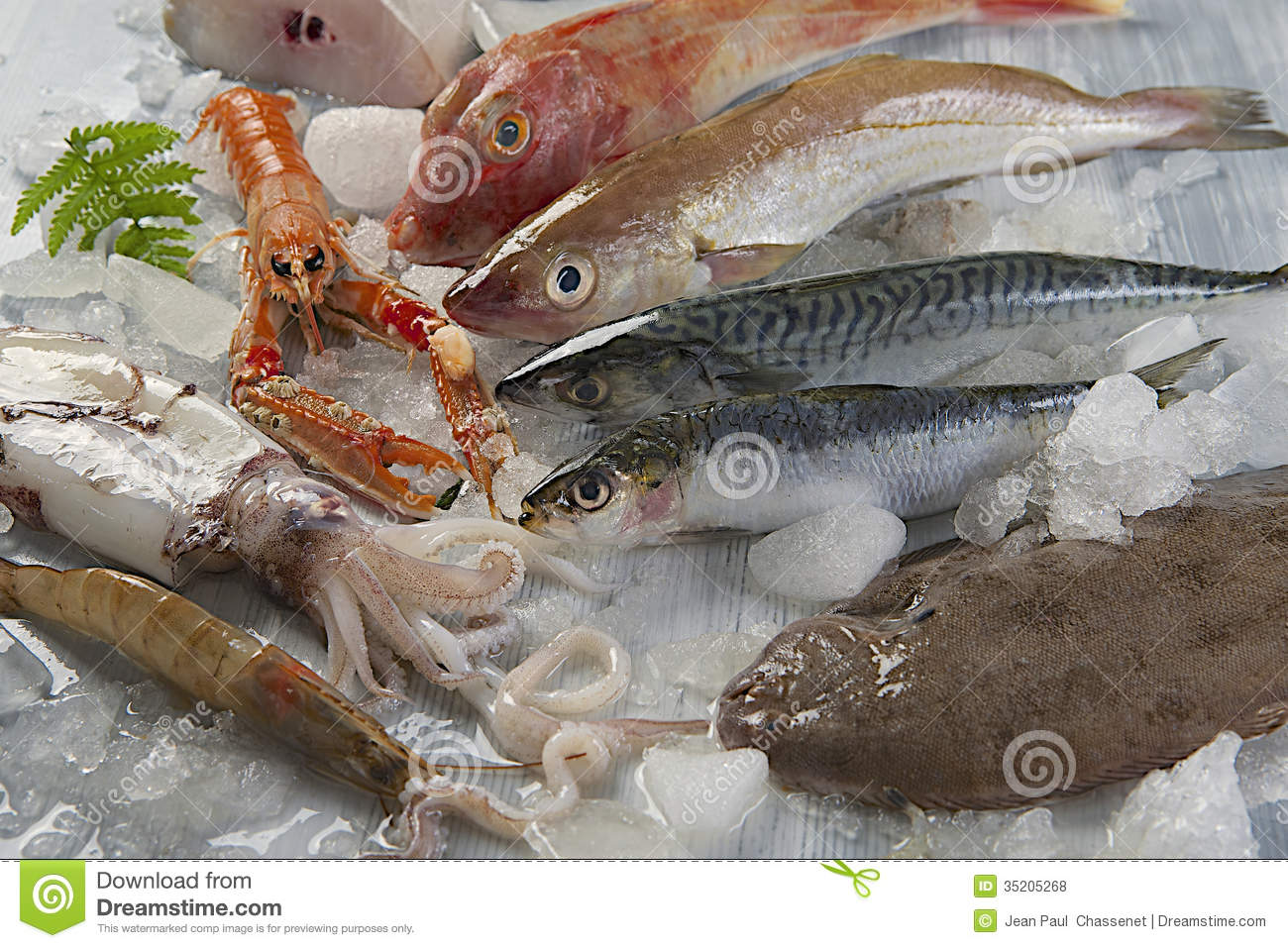 Fresh catch of fish stock photo image of close food for Is fish seafood