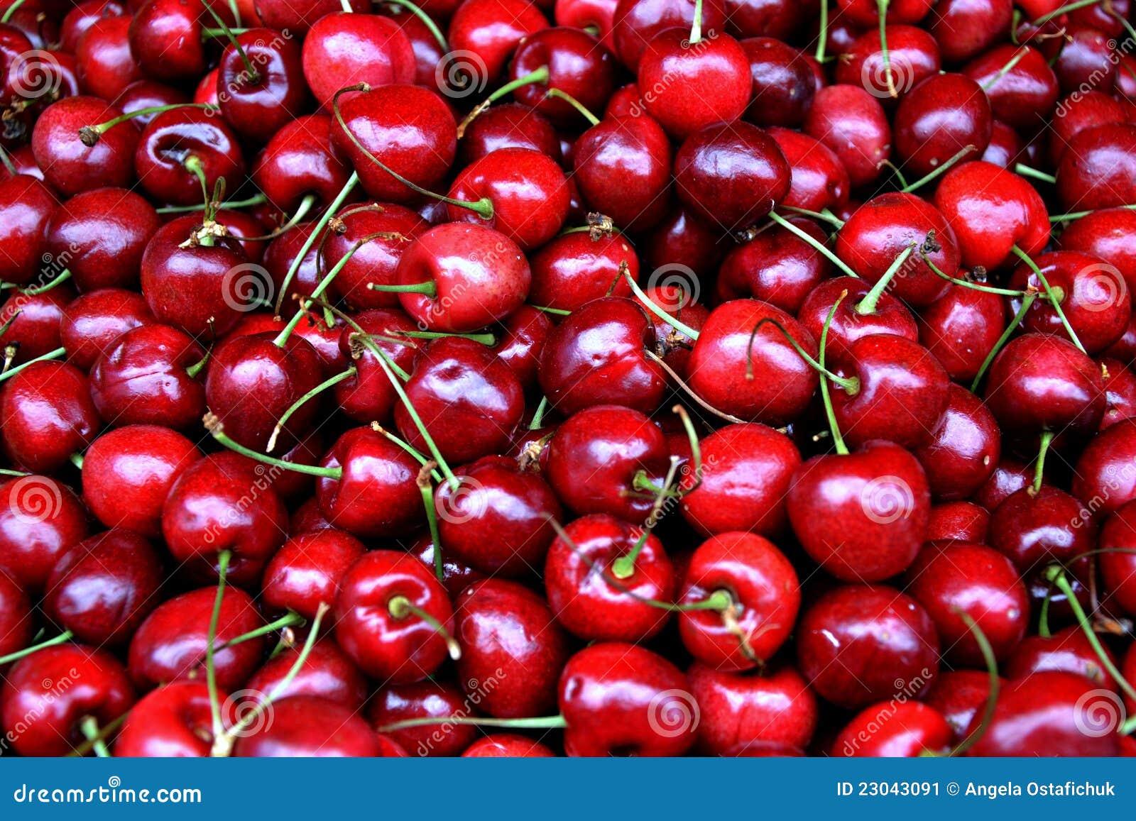 Fresh Cherries Stock Image - Image: 23043091