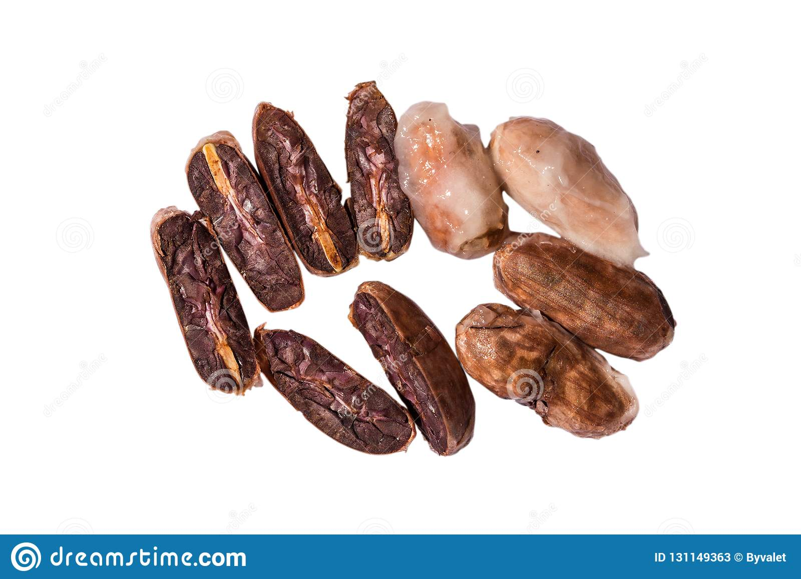 Fresh cocoa cacao beans stock image. Image of isolated