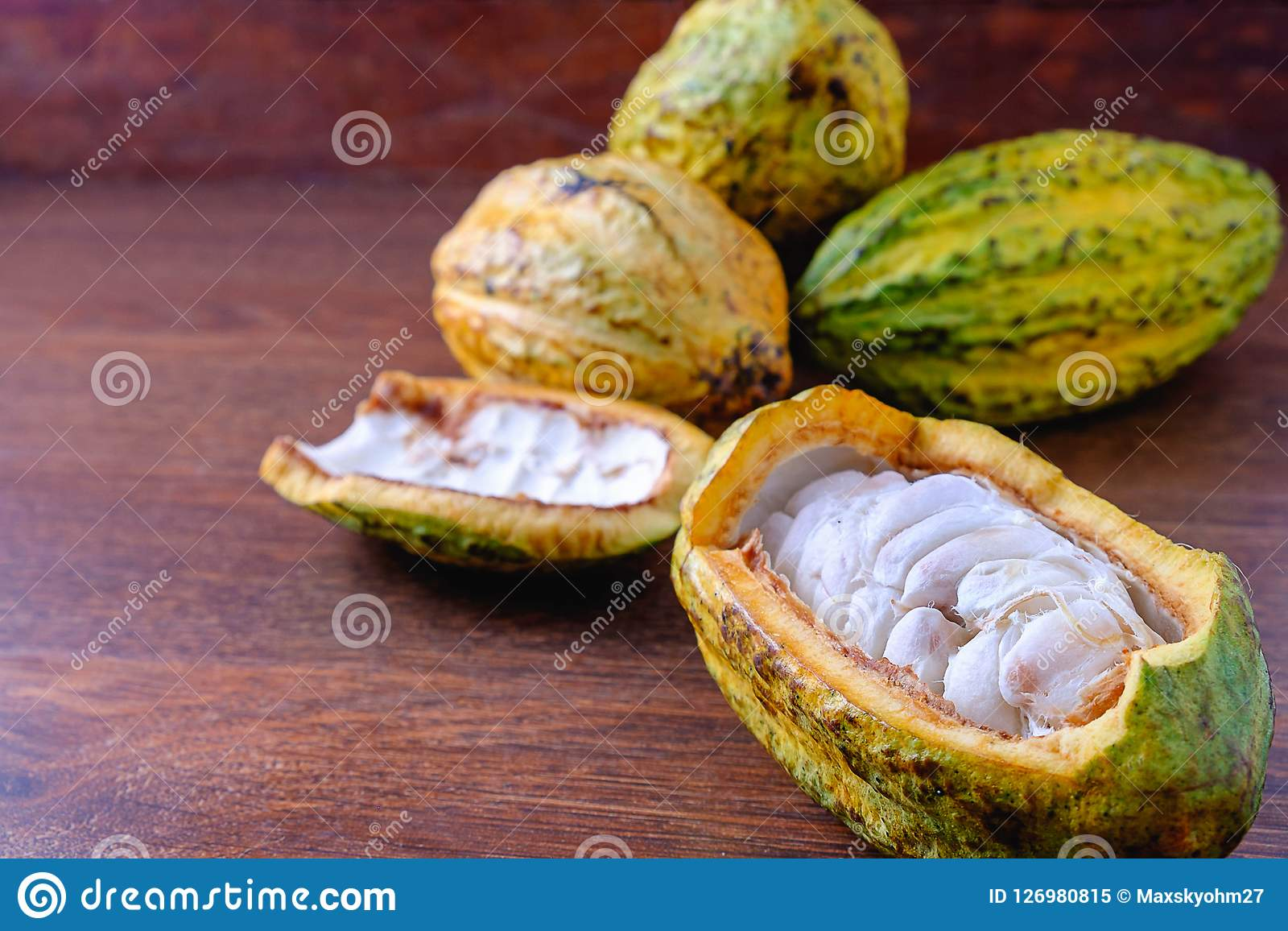 Fresh cocoa and cocoa pod with raw cacao