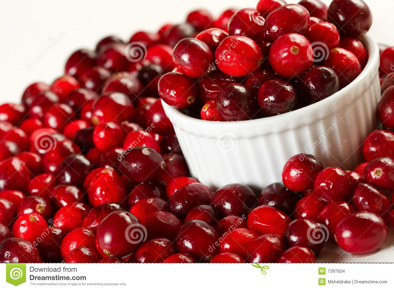 Fresh Cranberries Stock Images Image 7397604