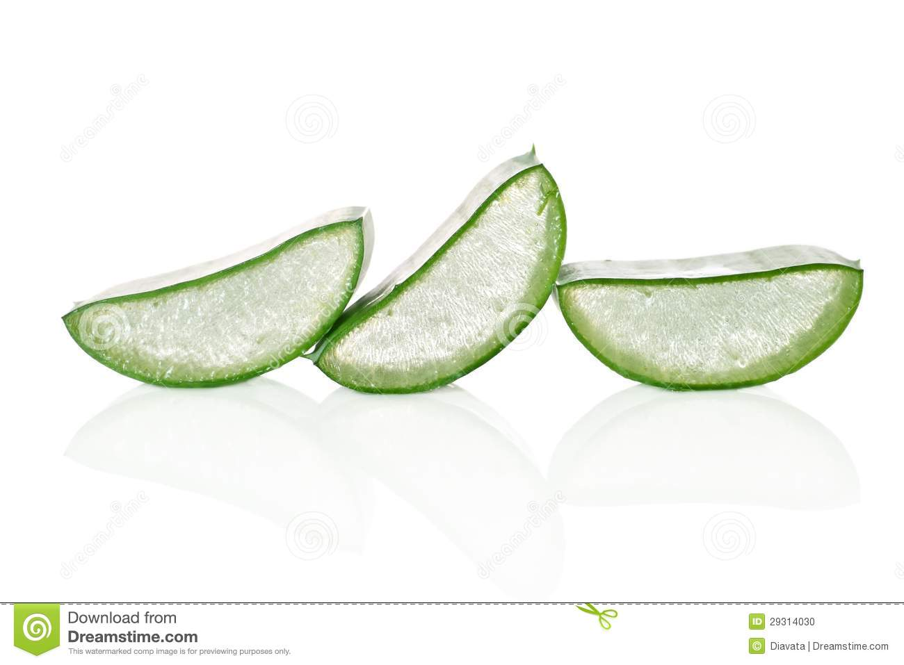 Dining Room Table Plans With Leaves Fresh Cut Aloe Vera Slices Stock Photo Image 29314030