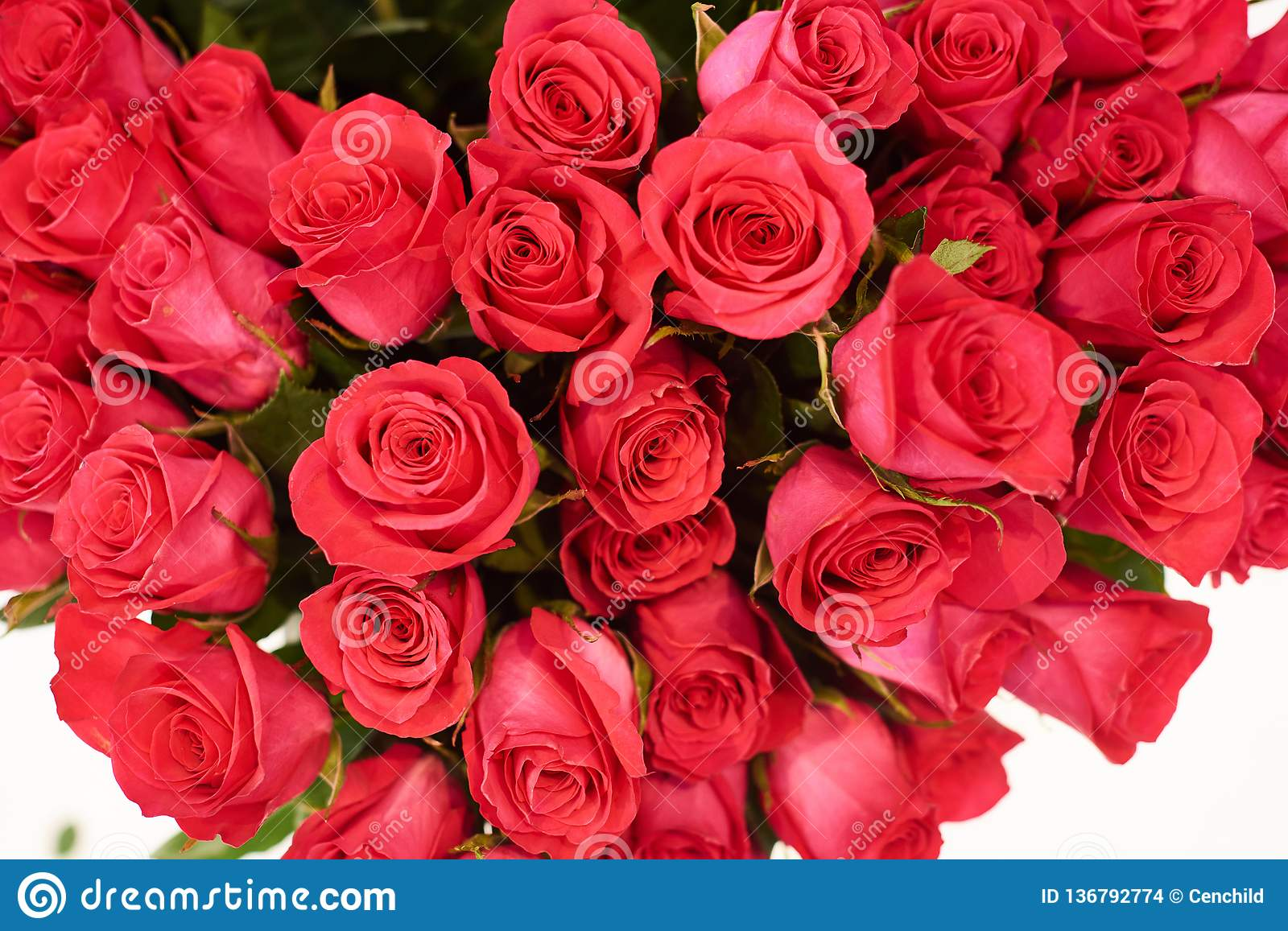 Fresh Cut Red Roses And Arrangements In Florist Shop