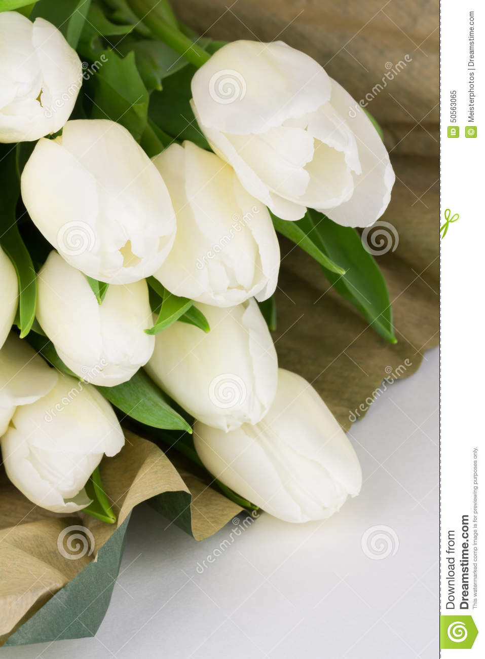 Fresh cut white tulips bunch stock image image of wrapping nature fresh cut white tulip flowers with brown paper wrapping mightylinksfo