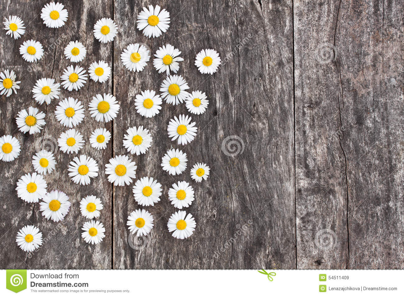 Fresh Daisy Flowers On The Wooden Table Stock Image Image Of