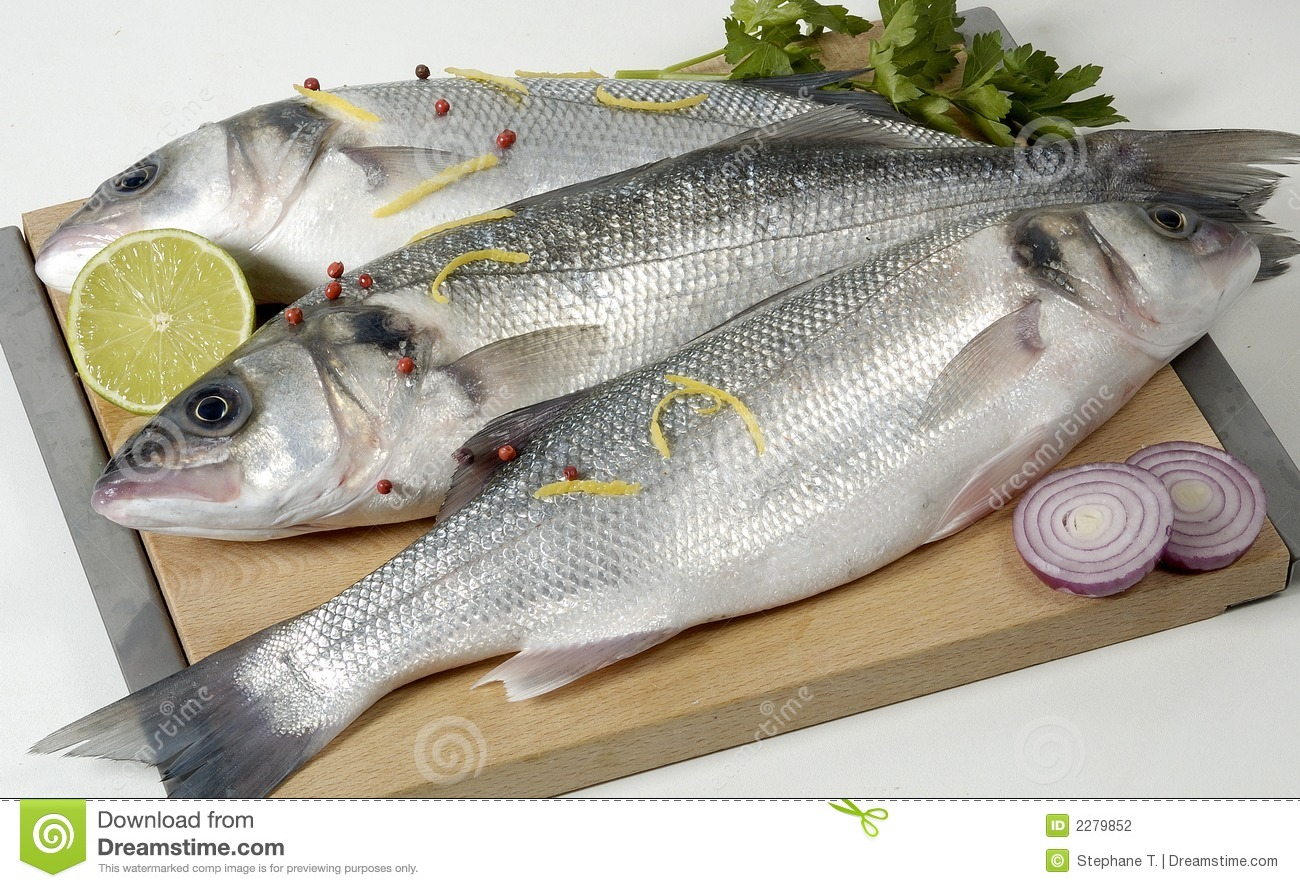 Fresh fish stock photo image of intact white food for Image of fish