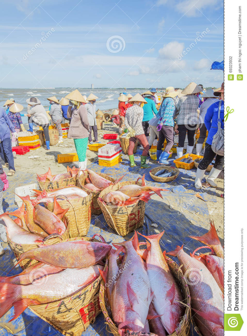 Fresh fish in basket on the beach editorial photography for Closest fish market