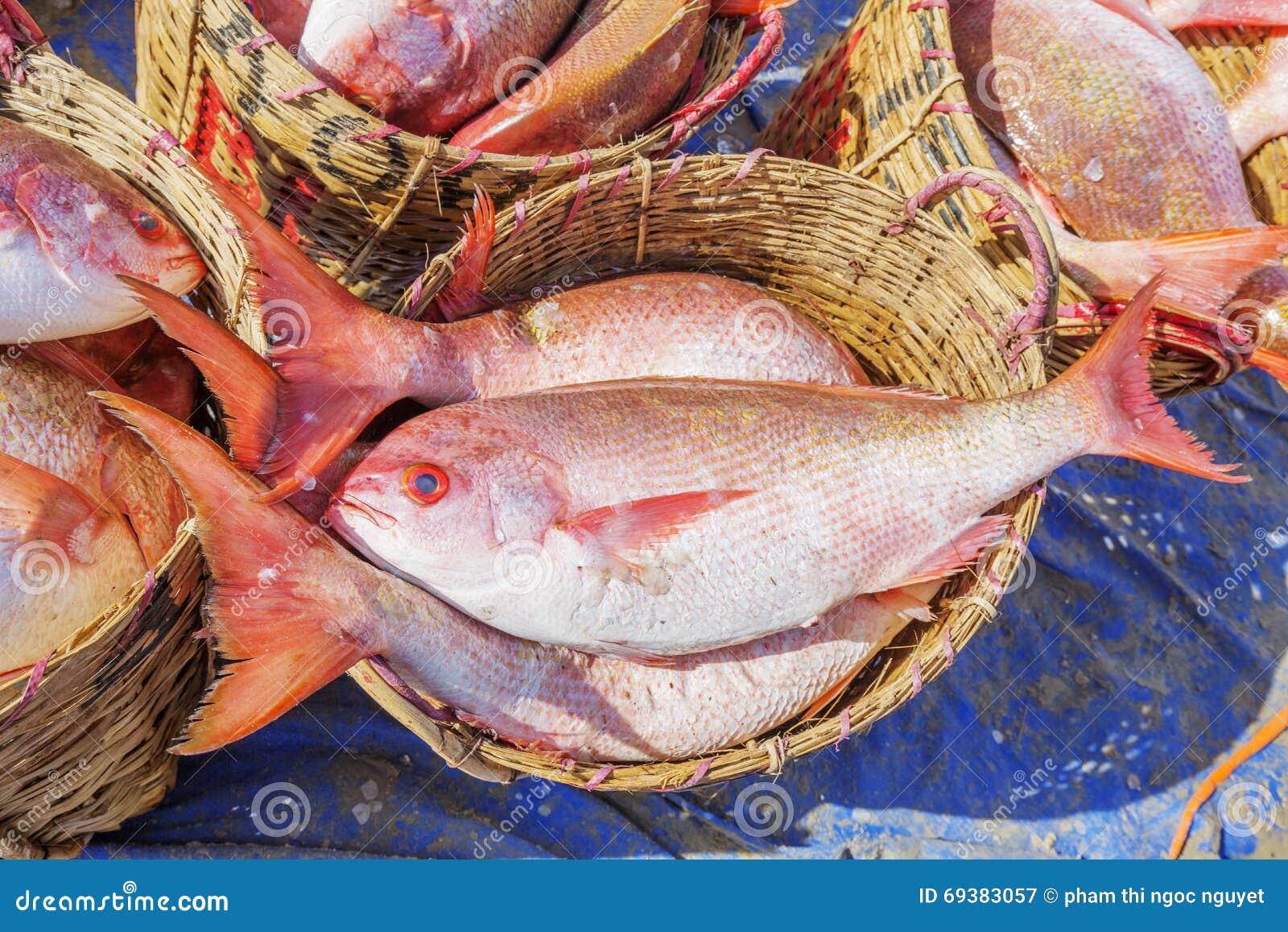 Fresh fish in basket at long hai fish market stock image for Closest fish market