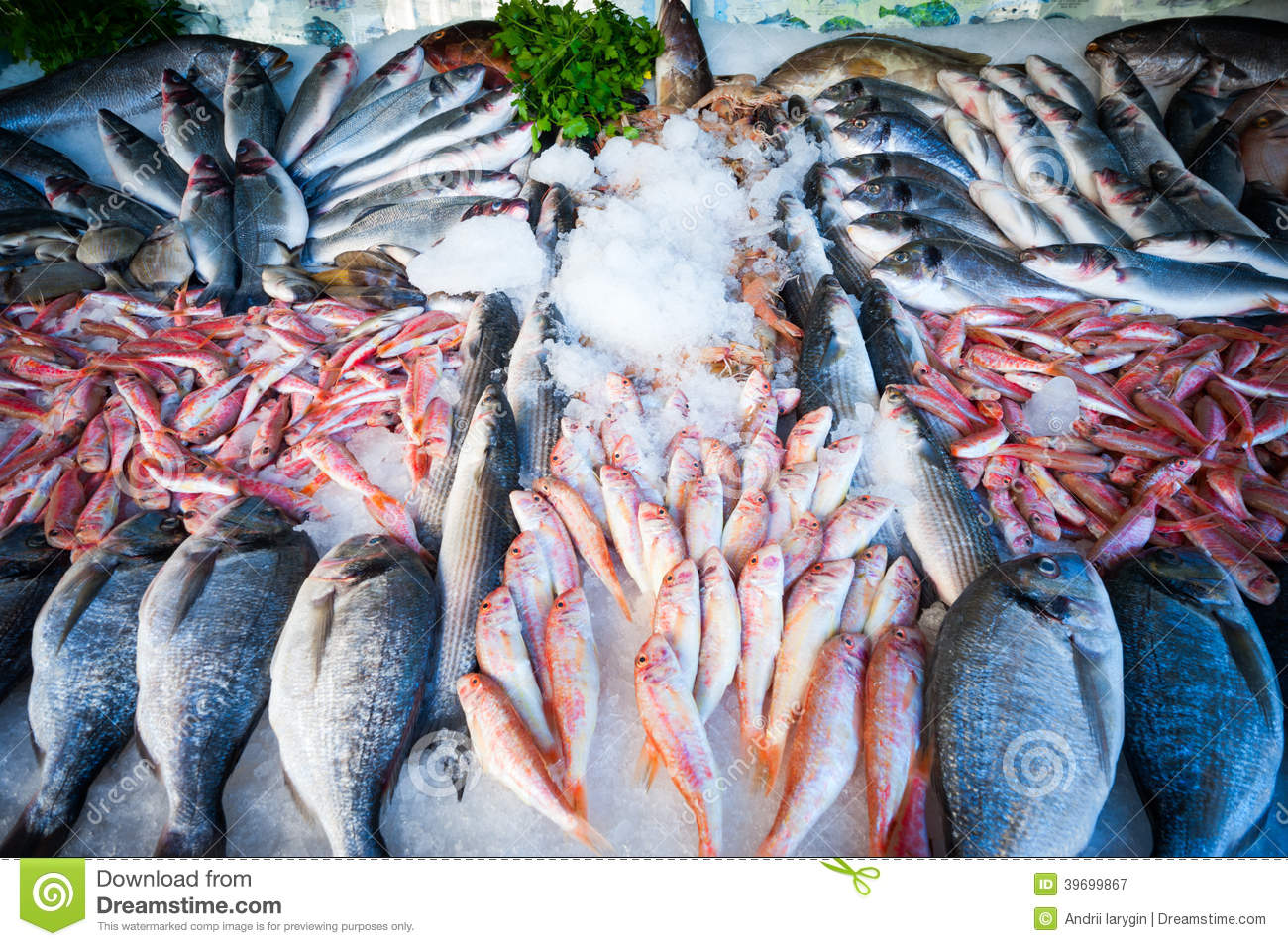 Fresh fish stock photo image 39699867 for Fresh fish store