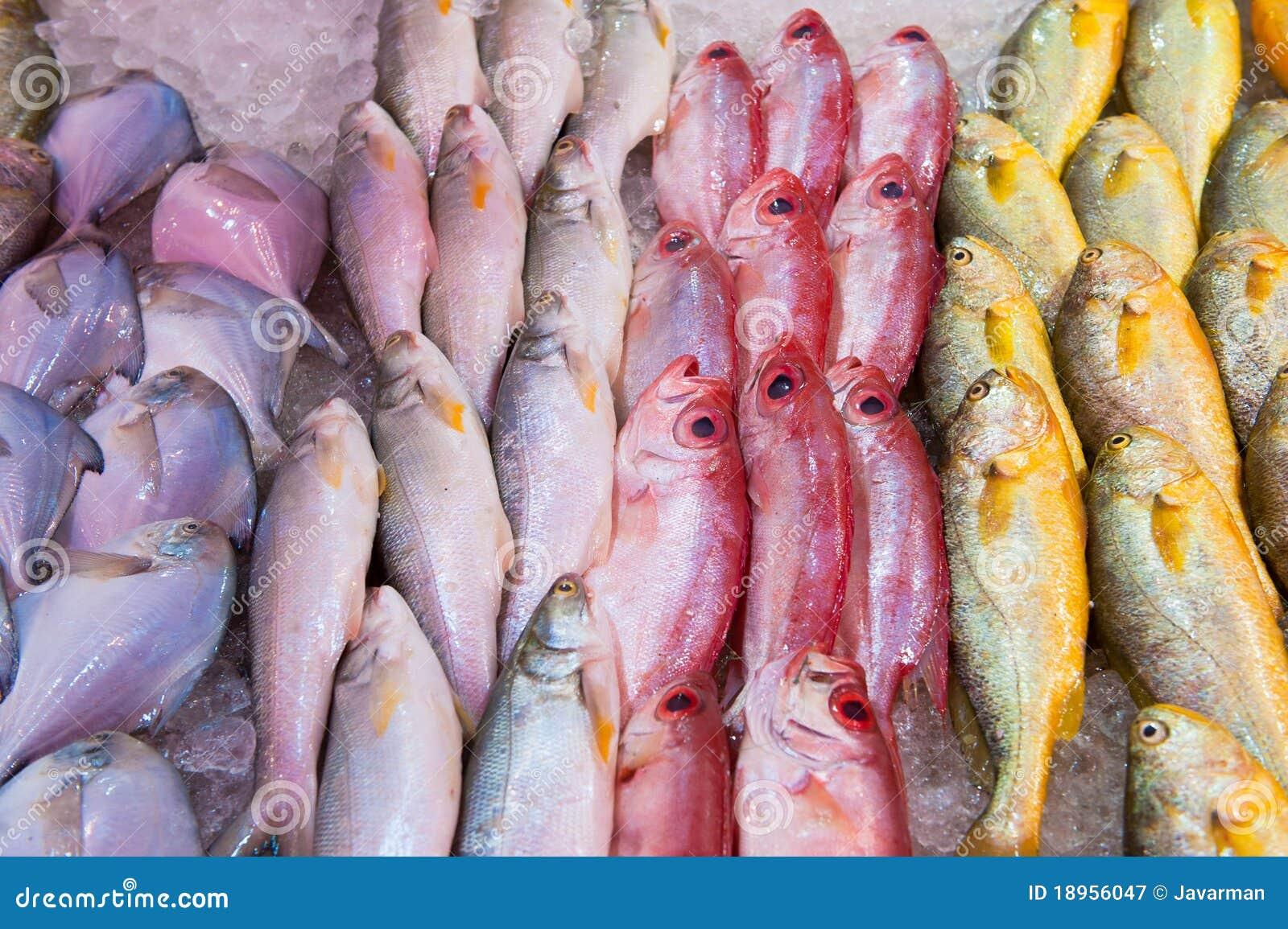 Fresh fish at a fish market royalty free stock photography for Empire fish market