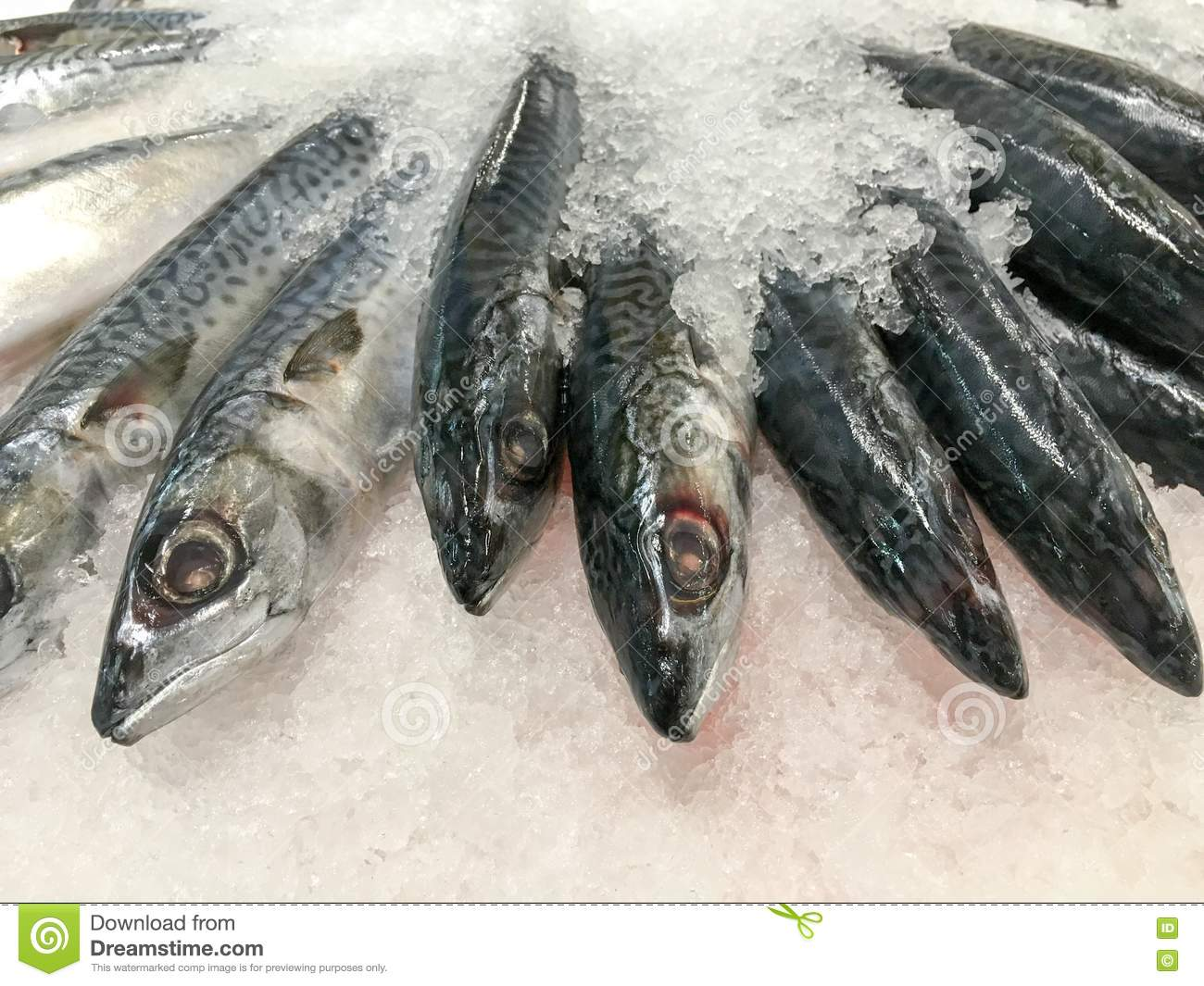 Fresh fish on ice in market seafood for sale