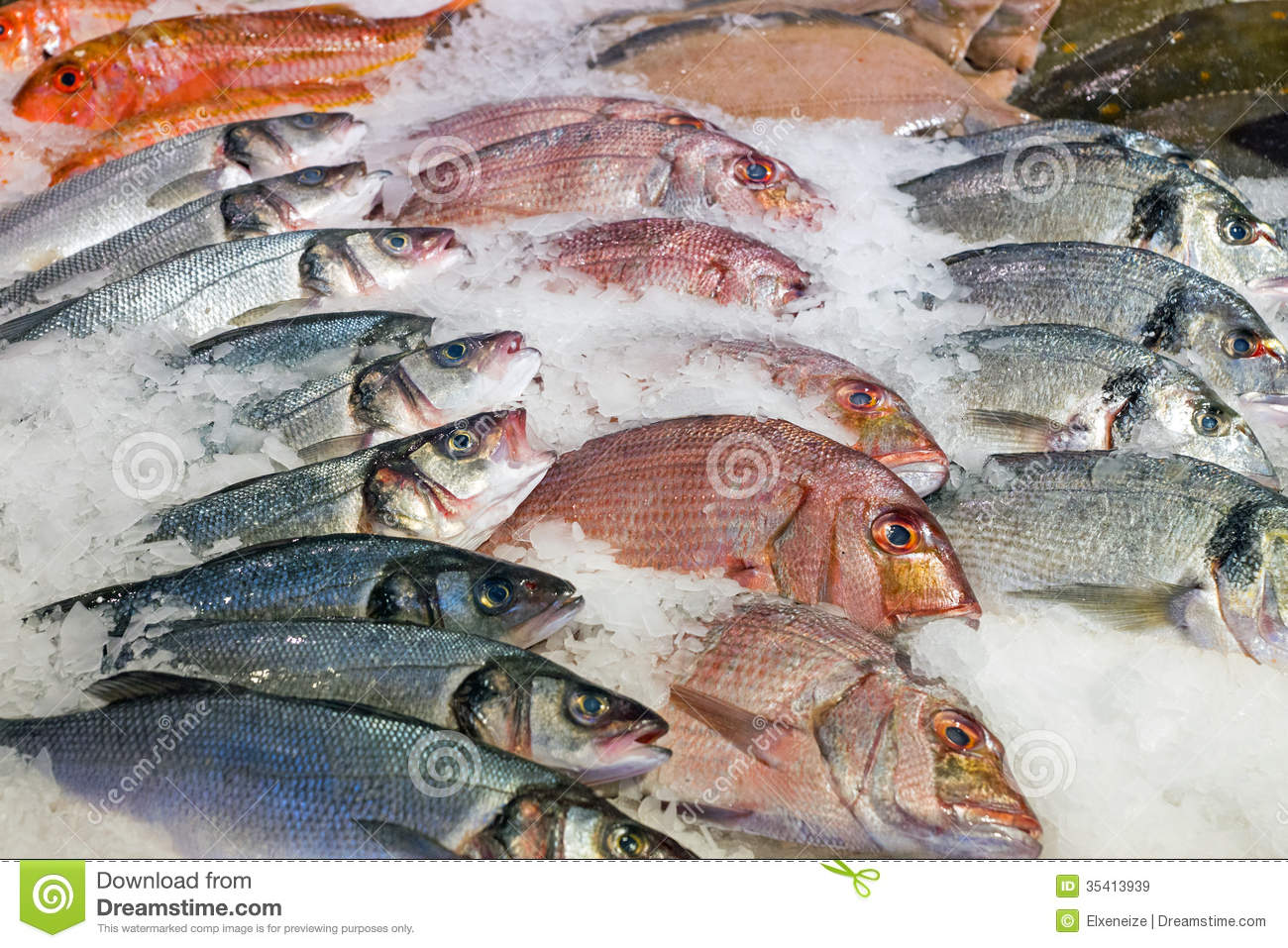 Fresh fish at the market stock image image of fishing for Fresh fish market near me