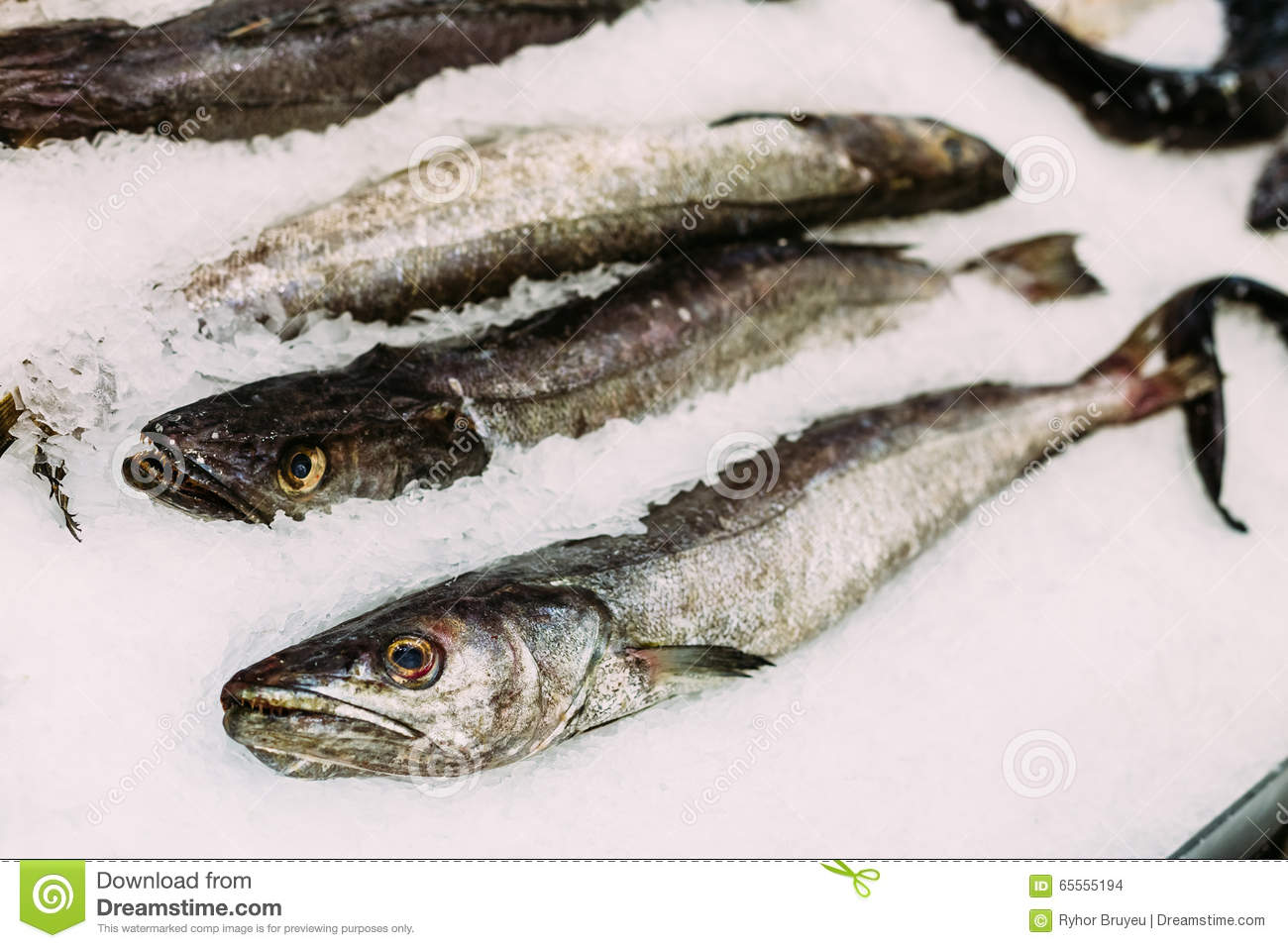 Fresh fish merluza or hake on ice on market store shop for Fresh fish store