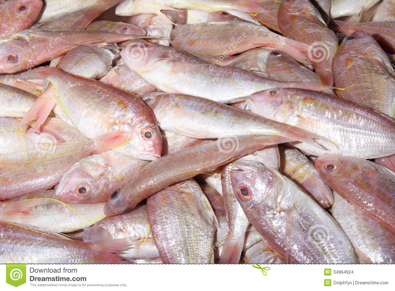 how to sell fish to markets