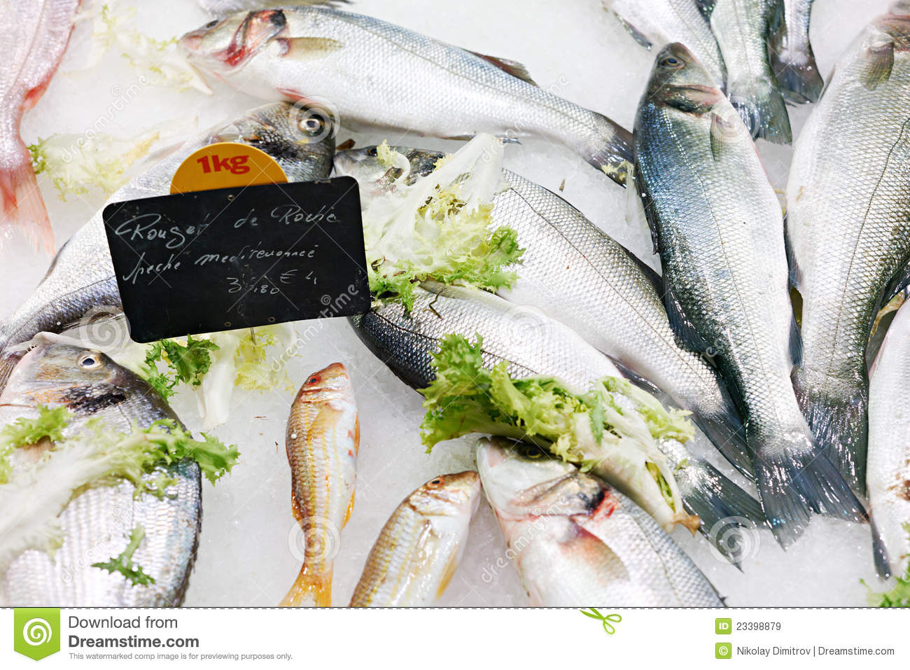 fresh fish for sale royalty free stock images image