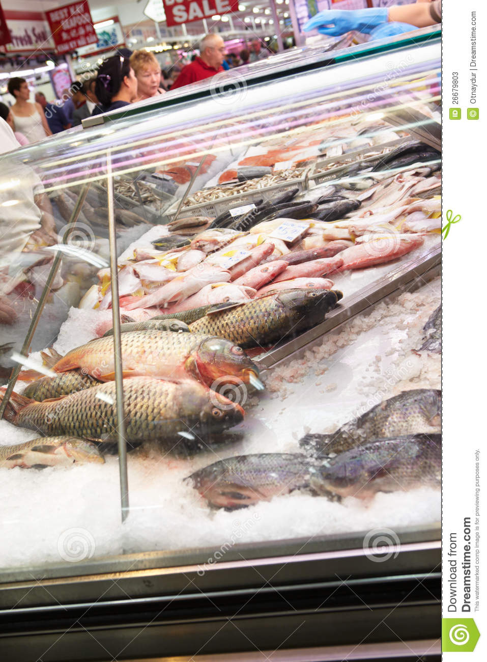 Fresh fish for sale editorial stock photo image 26679803 for Stock fish for sale