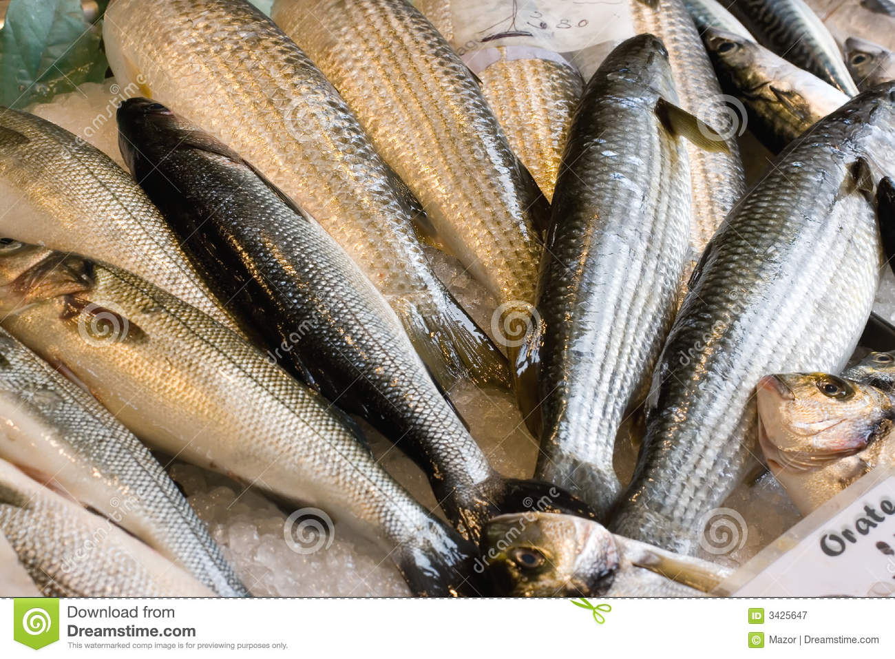 Fresh fish for sale royalty free stock photography image for Stock fish for sale