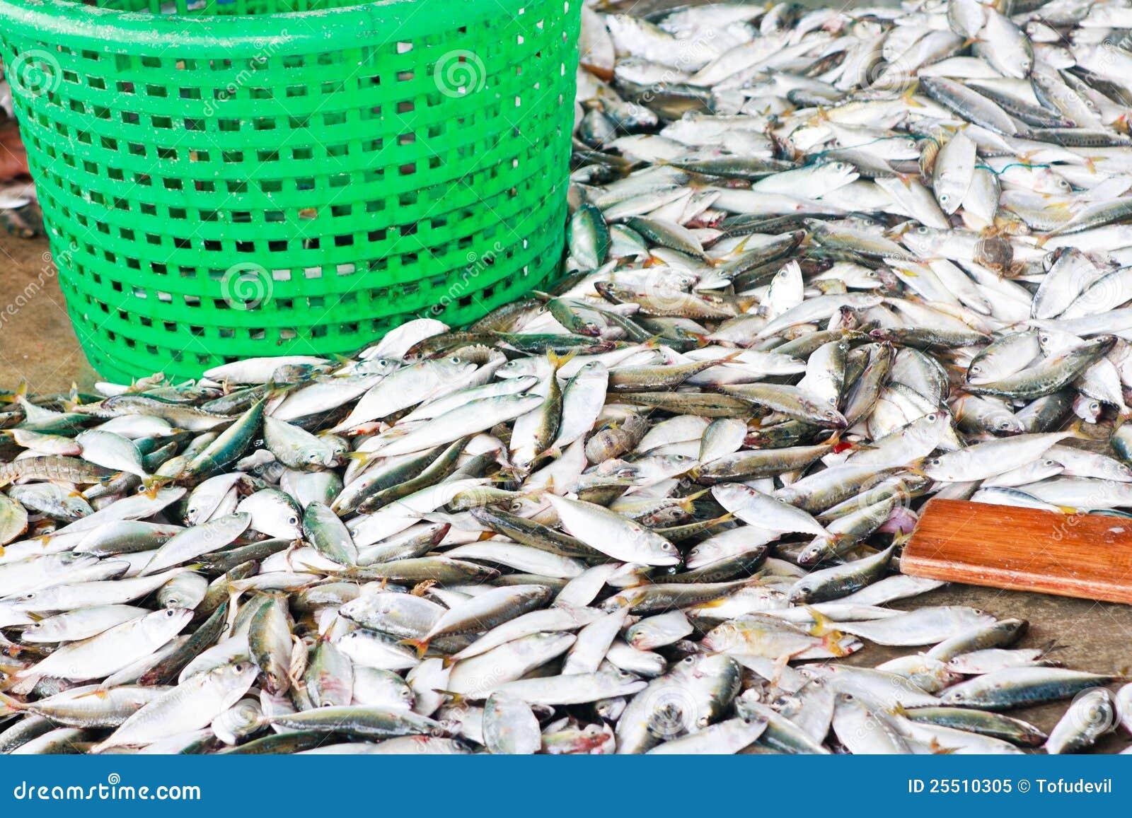 Fresh fish from sea market royalty free stock photo for Nearest fresh fish market