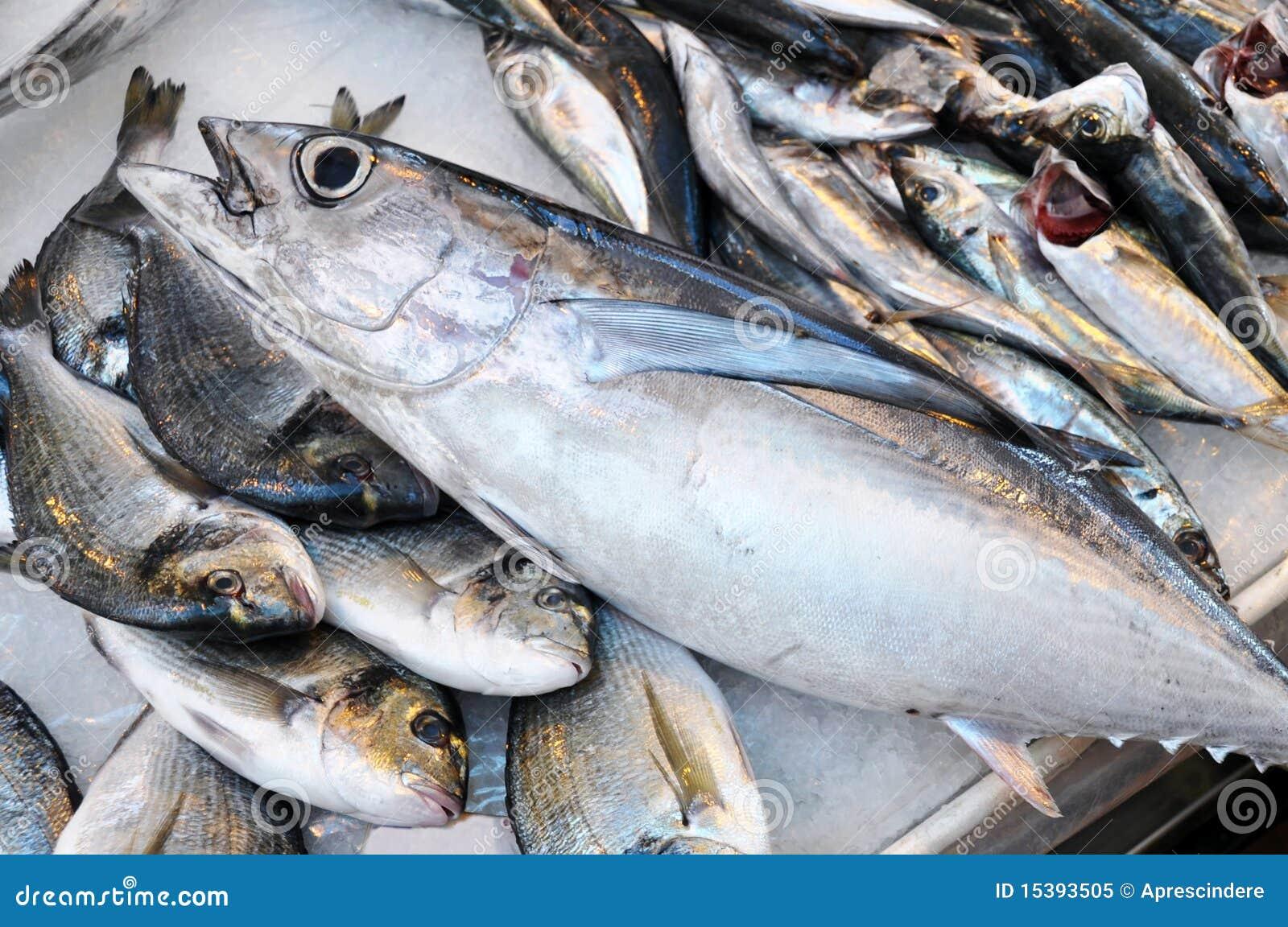 Fresh fish on a...