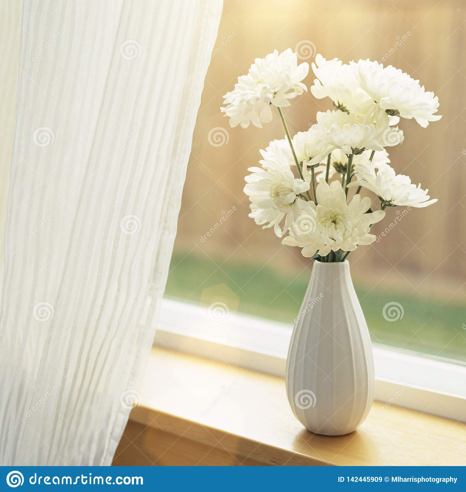 Fresh flowers in vase on windowsill with sheer fabric curtains window coverings. Simple, natural, home interior decor.