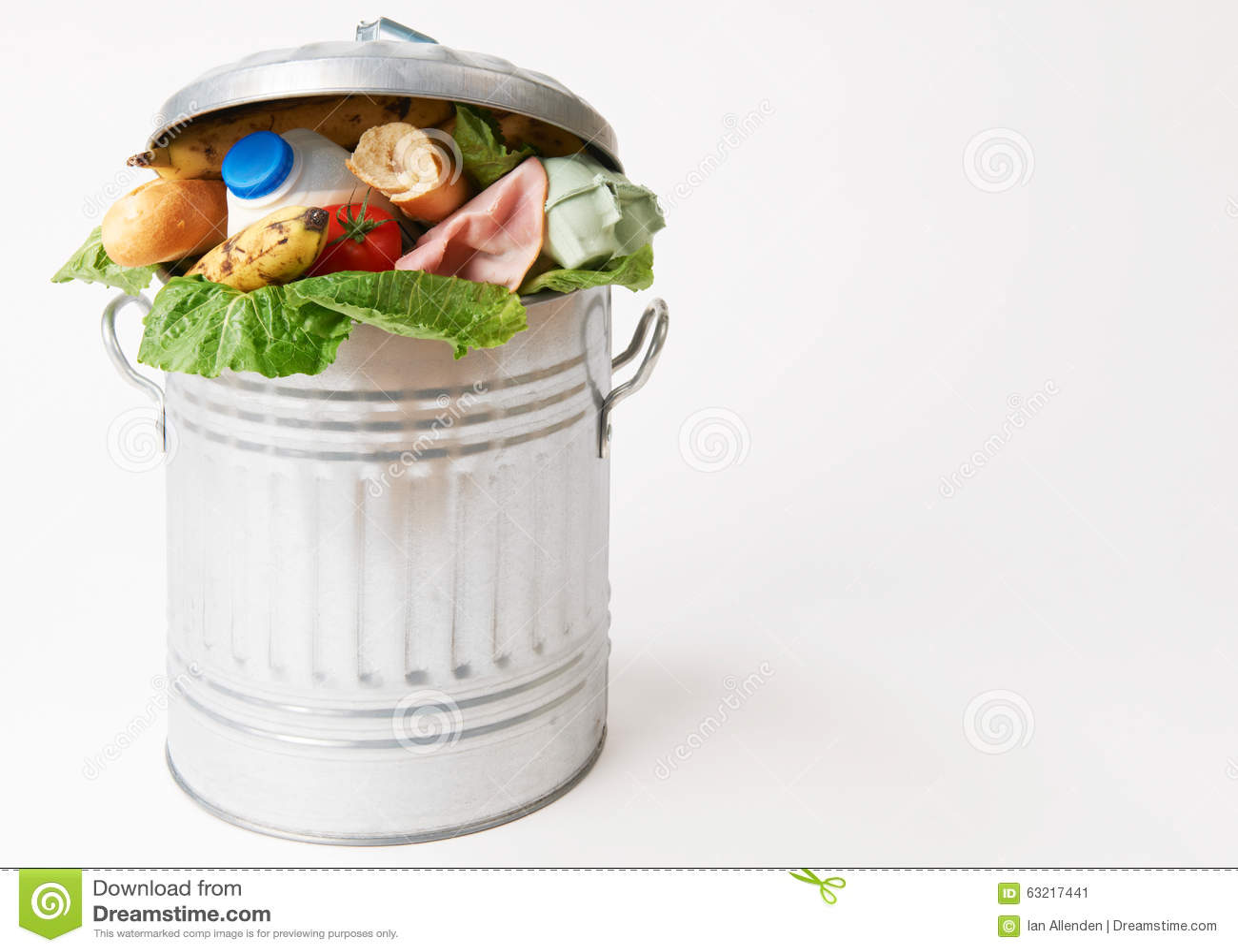 canned food vs fresh food essay