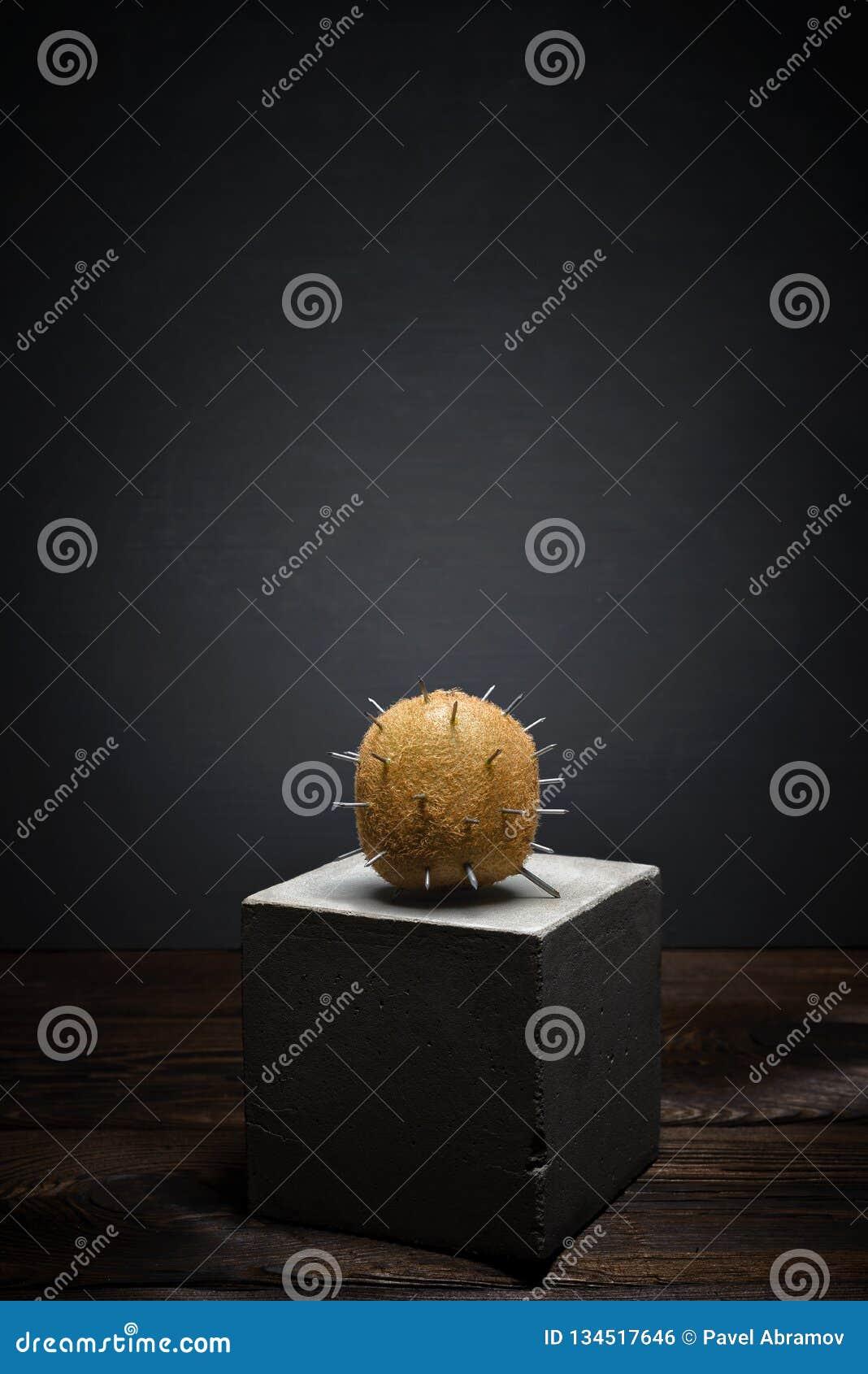 Fresh fruit on dark background on concrete stand. Soft shaggy kiwi fruit with sharp thorns