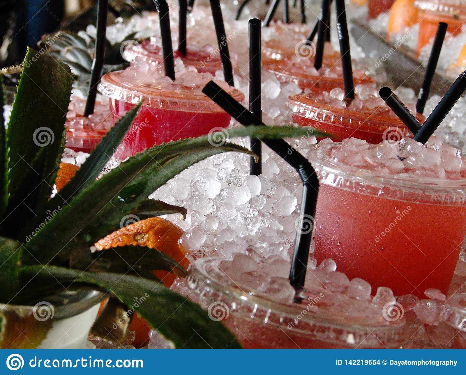 Fresh fruity cold drinks, displayed at a table full of ice, aloe verra plants and fruit