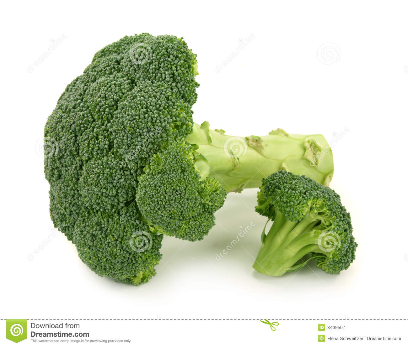 Fresh green broccoli