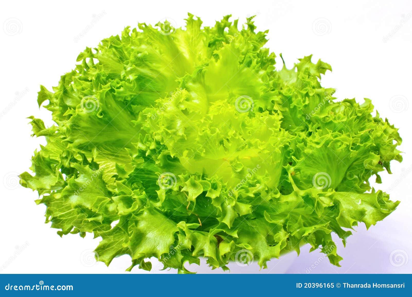how to clean iceberg lettuce