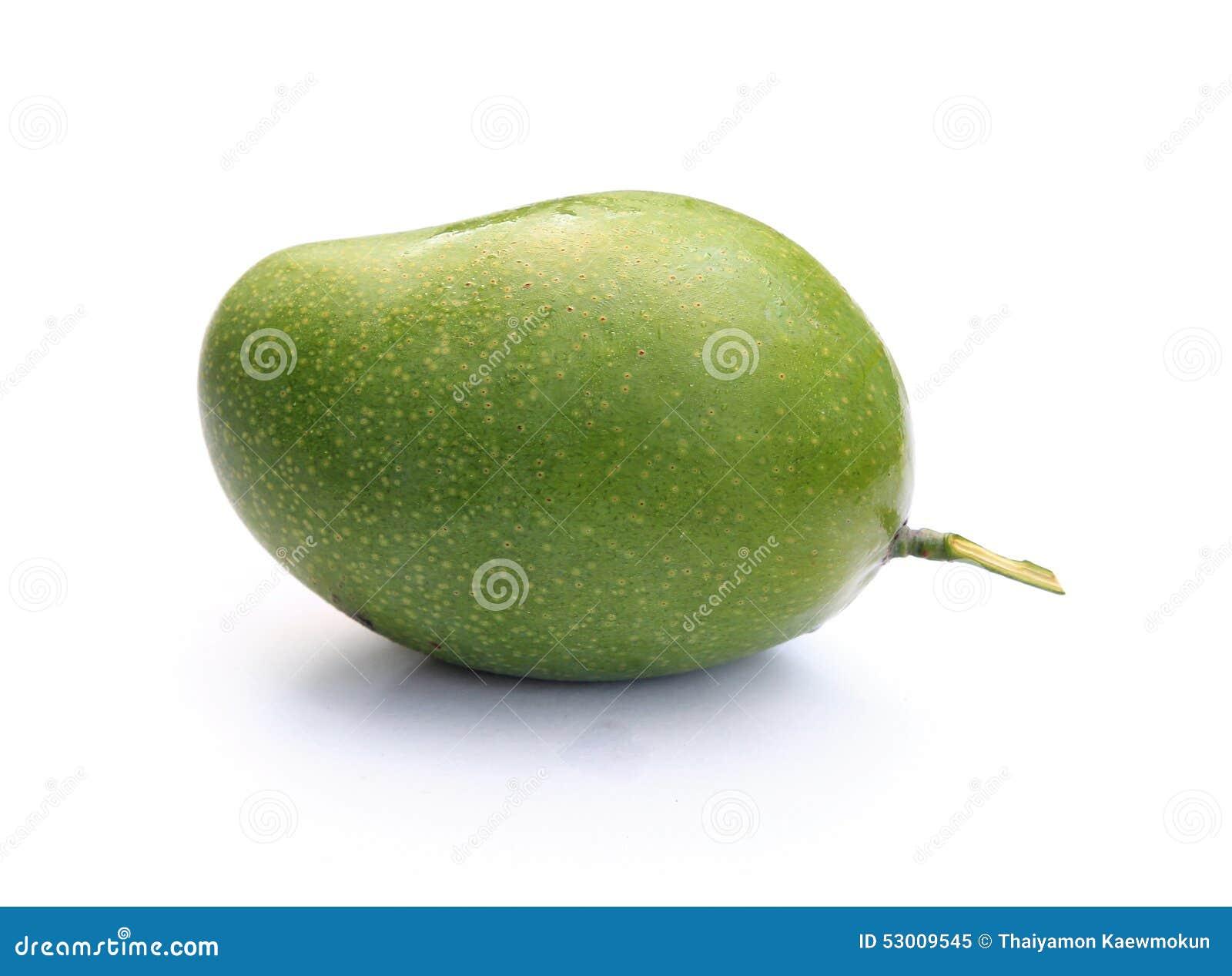 fresh green mango stock photo image 53009545