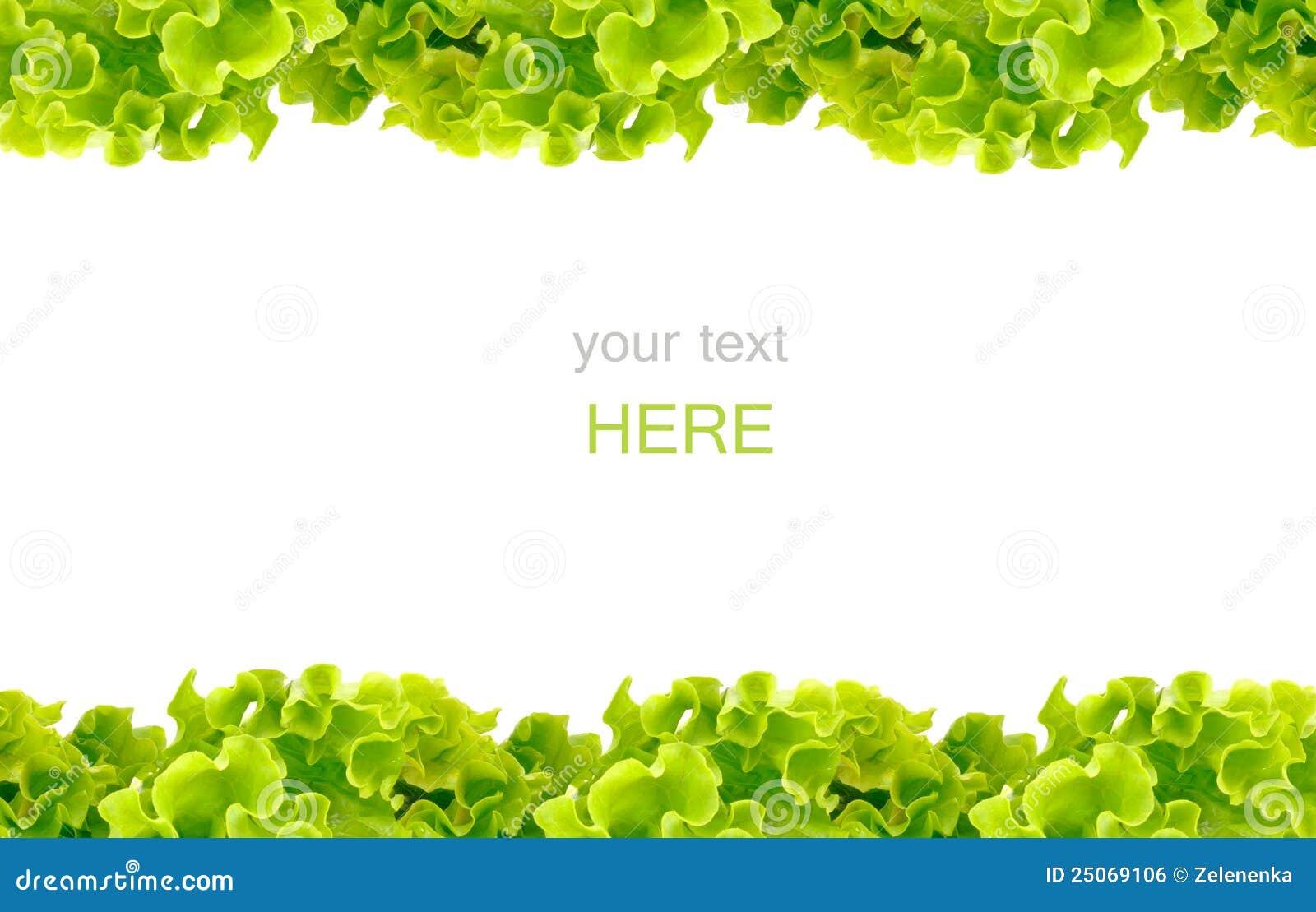 fresh green salad frame royalty free stock image image lettuce clipart free lettuce clipart