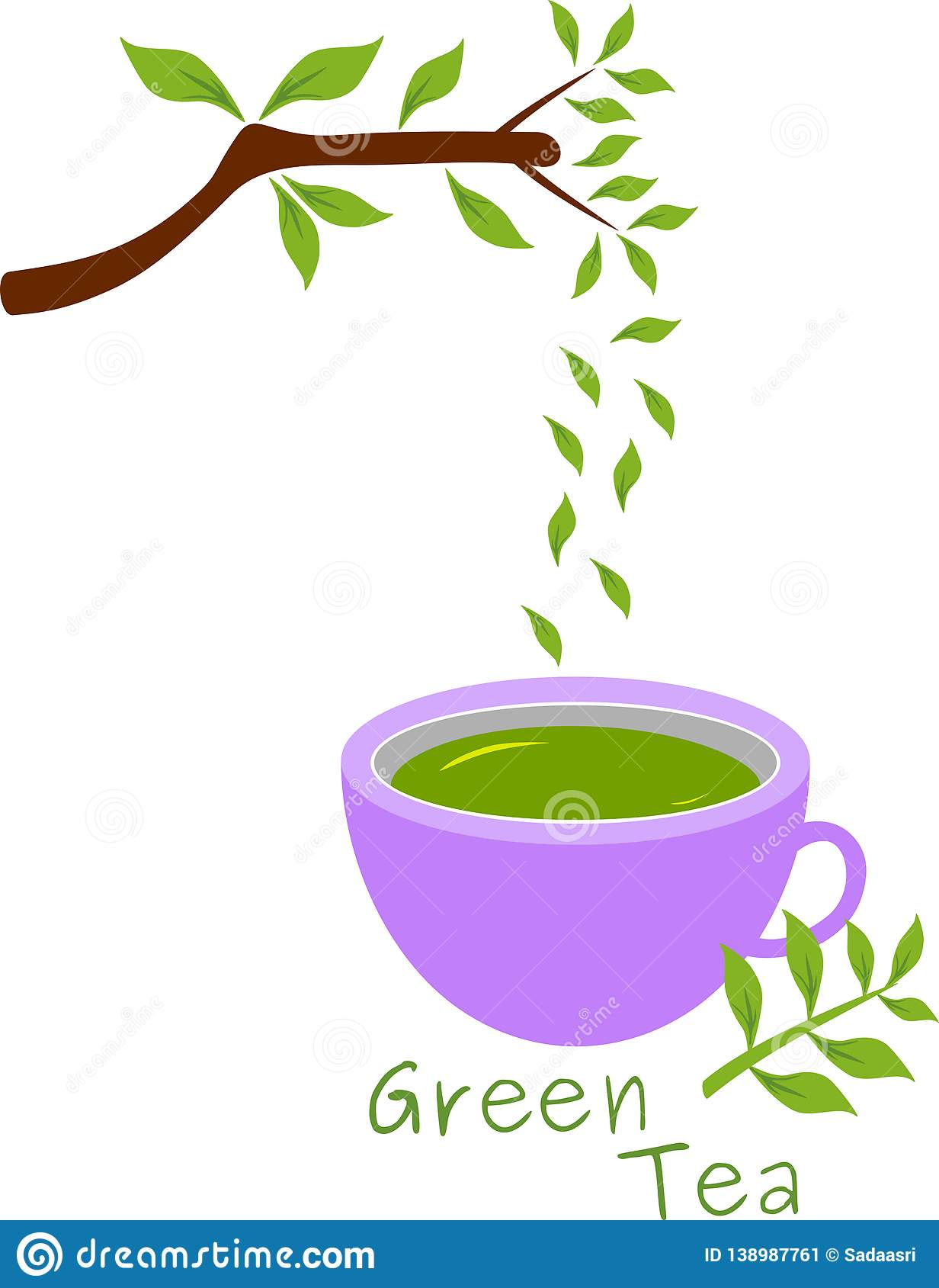 Fresh green tea illustration with leaves