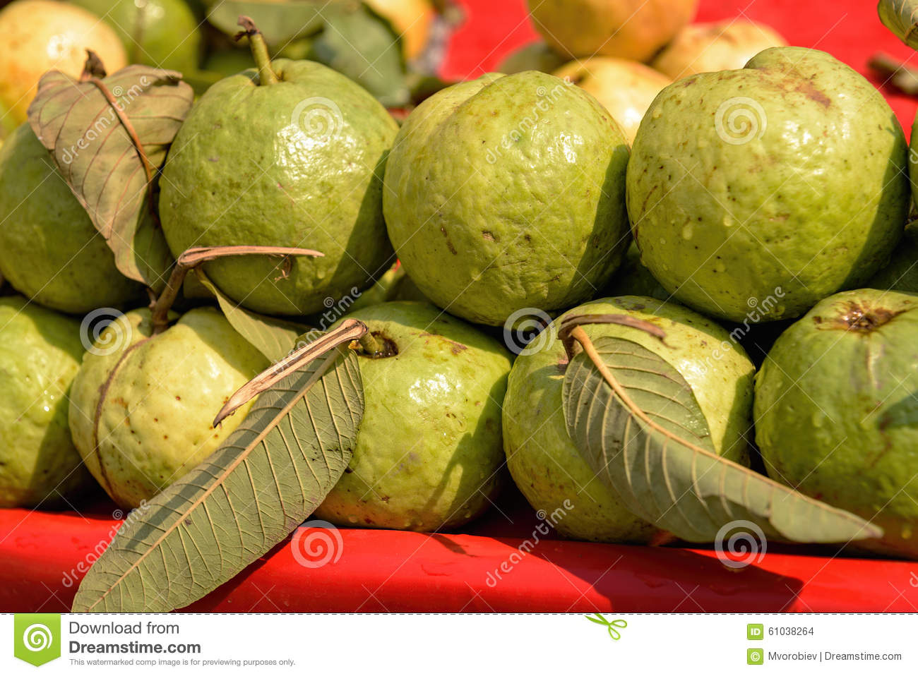 guavas fruit and old memories The sour belimbing fruit used to be pickled and added to  it could be pak kia, the pink- fleshed guava,  years are just distant memories.