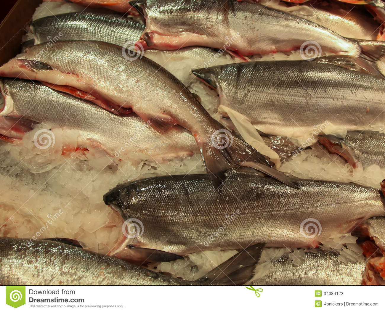 Fish market king salmon stock photo image of chinook for Pike place fish
