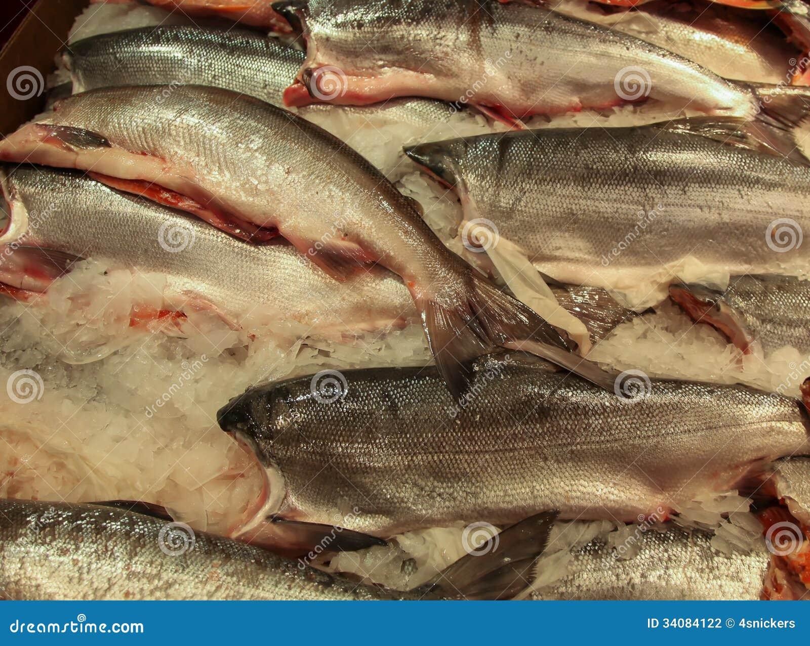Fish market king salmon stock photography image 34084122 for King fish market