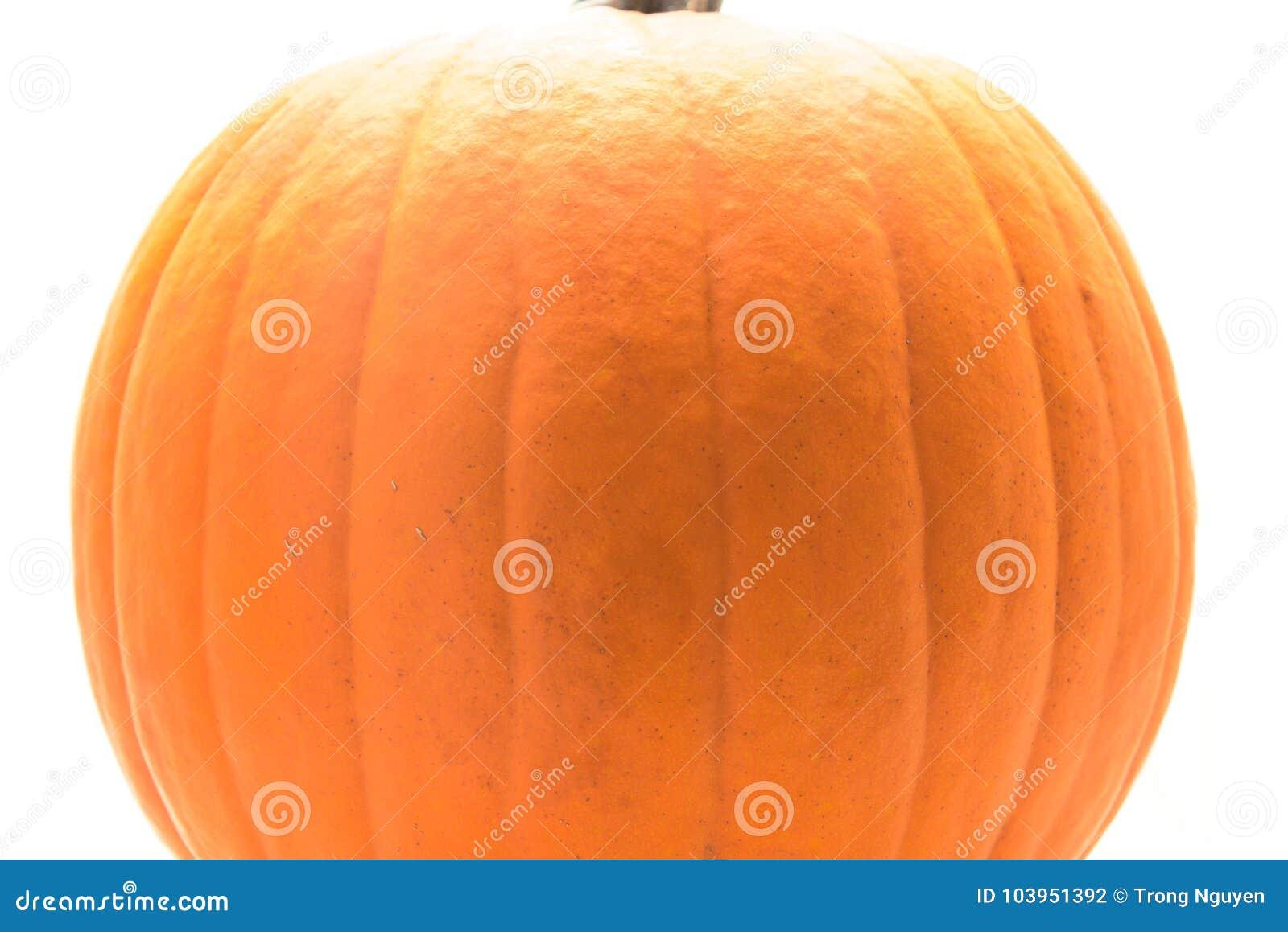 Fresh Large Orange Pumpkin Isolated On White Background