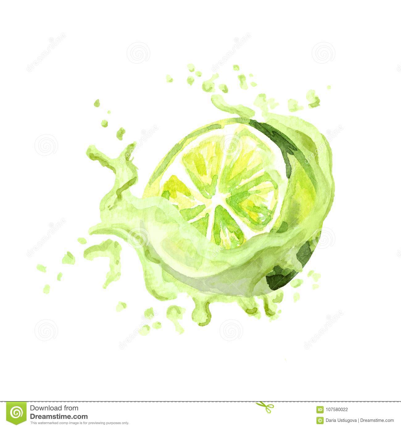 Fresh lime in juice splash isolated on white background. Watercolor hand drawn illustration.