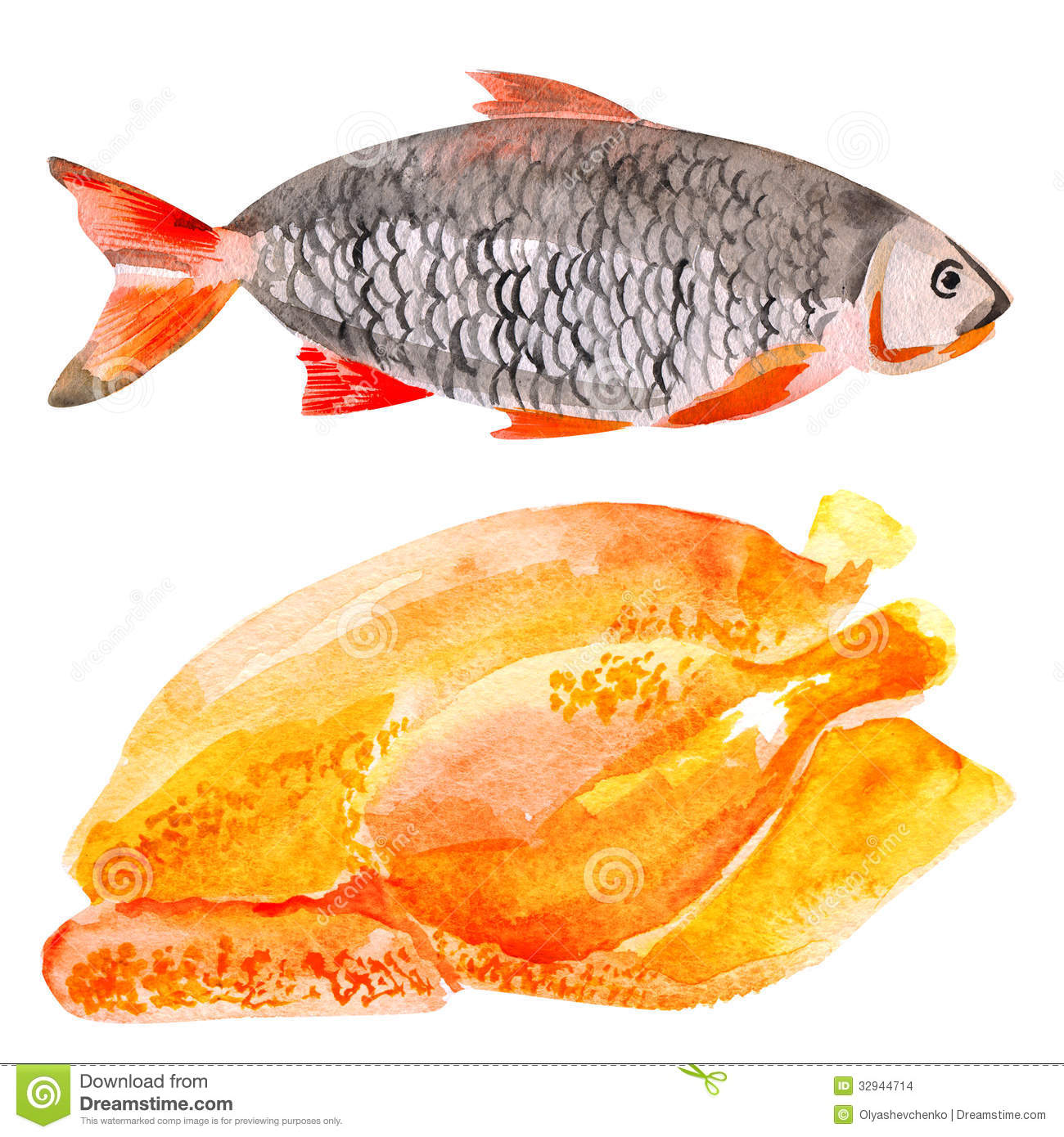 Fresh meat and fish stock photo image of fish ingredient for Fishers chicken and fish