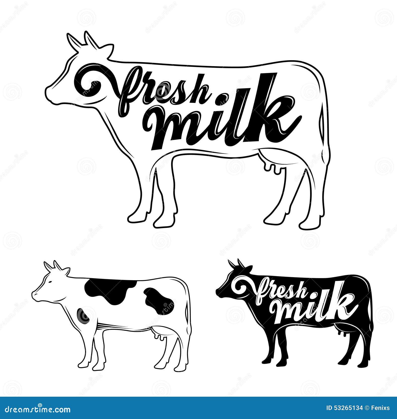 fresh milk  vector stock vector  image of farm  diagram