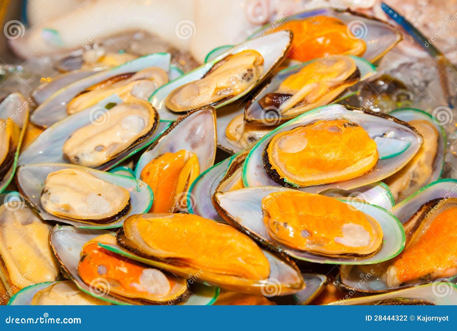Fresh New Zealand Green Mussel Stock Photo Image Of Mollusk
