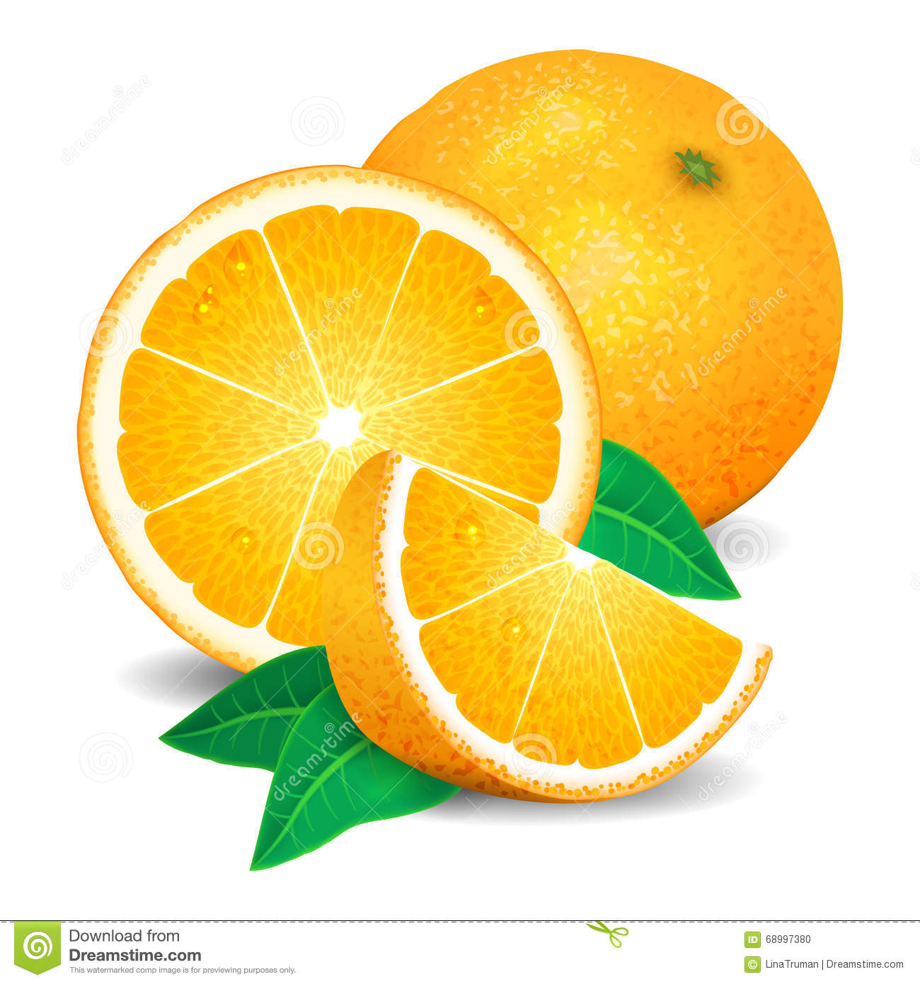 Orange Fruit Vector Fresh Oranges Fruit, P...