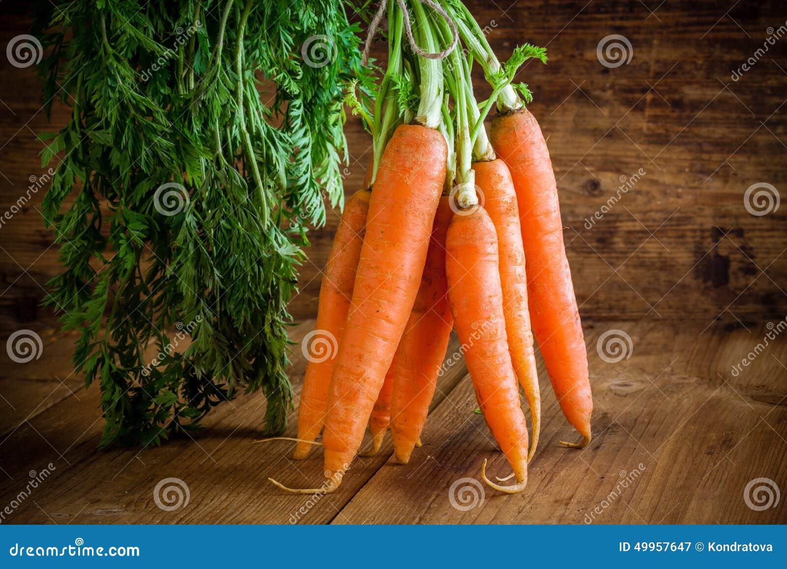 Fresh organic carrots bunch