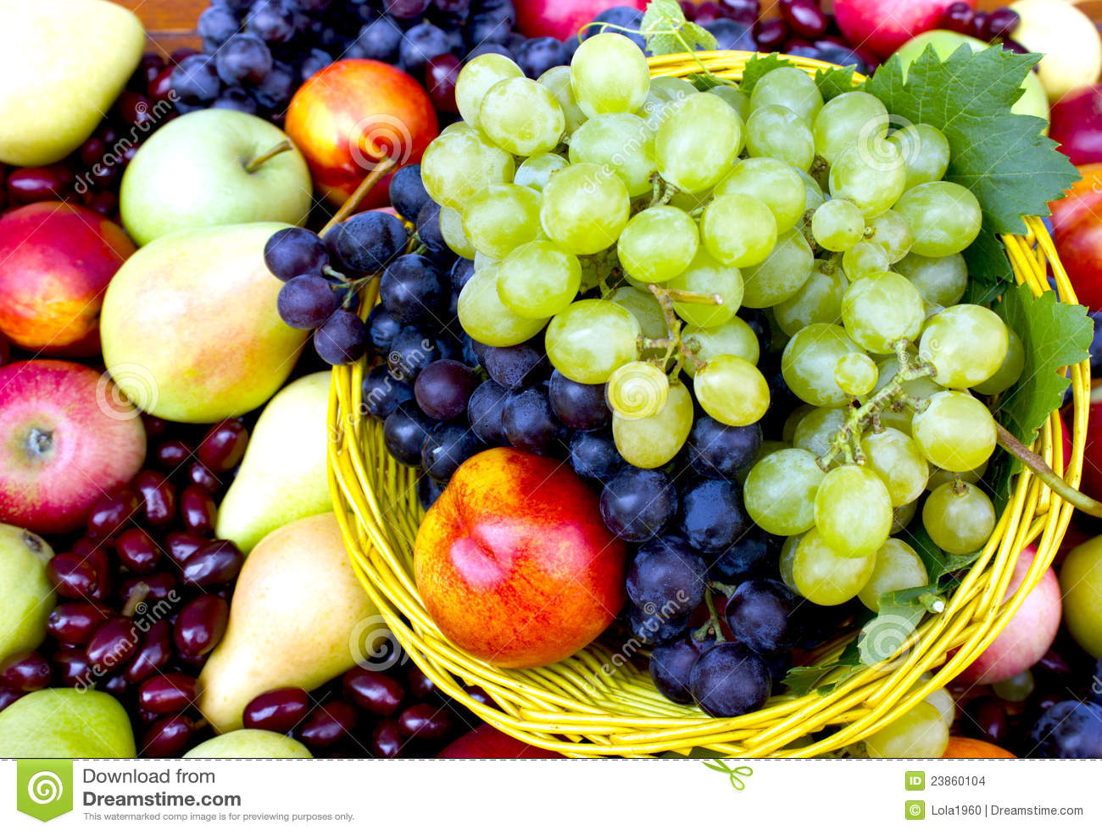 Fresh vegetables ~ Food & Drink Photos ~ Creative Market