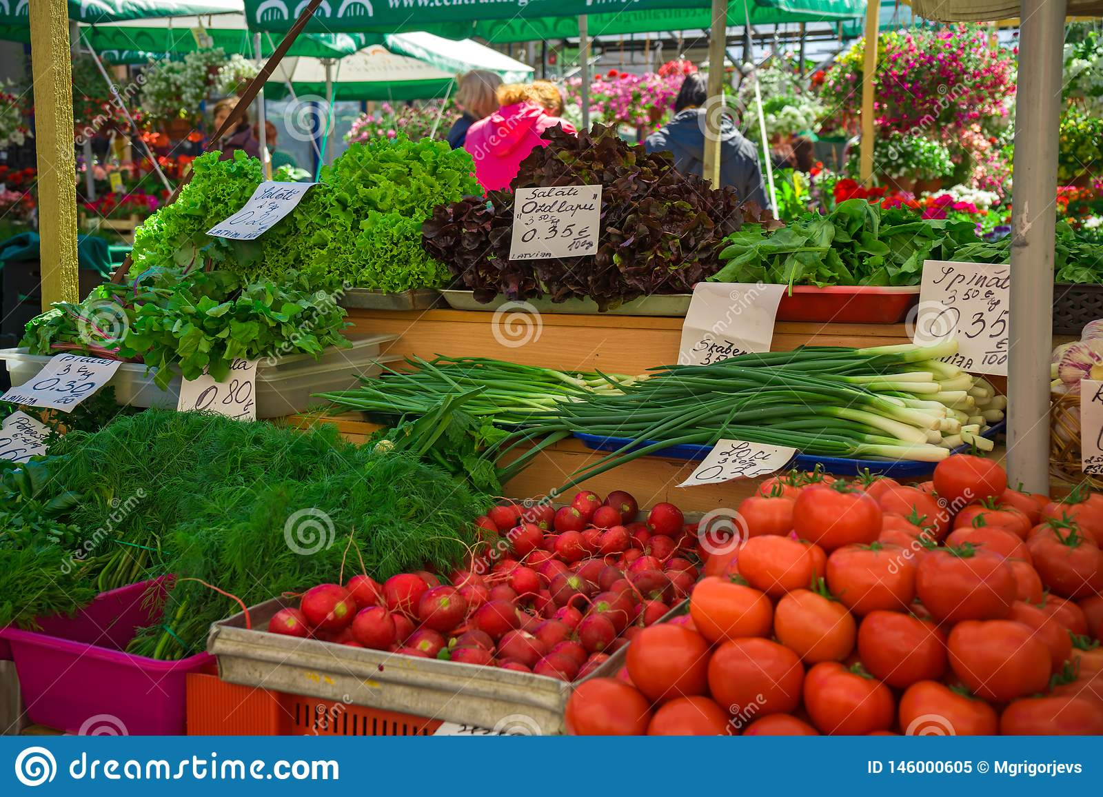 Fresh And Organic Vegetables At Farmers Market: Raddish