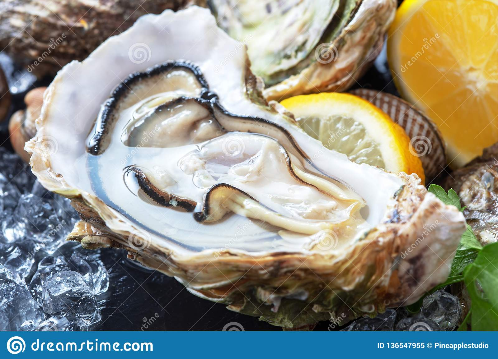 Fresh oysters with ice and lemon