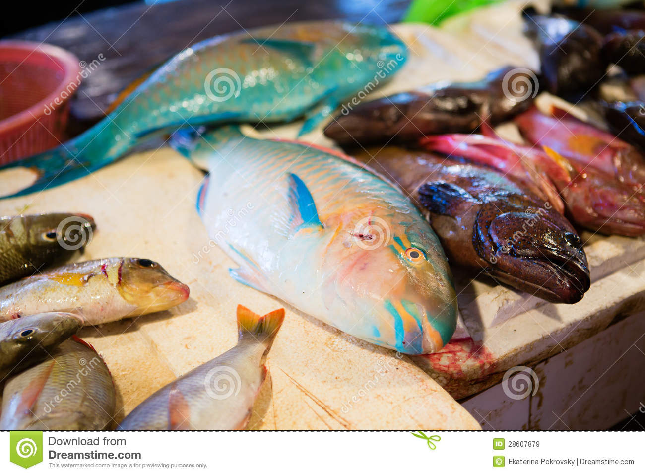 Fresh parrot fish on seafood market stock image image for Jamaica fish market